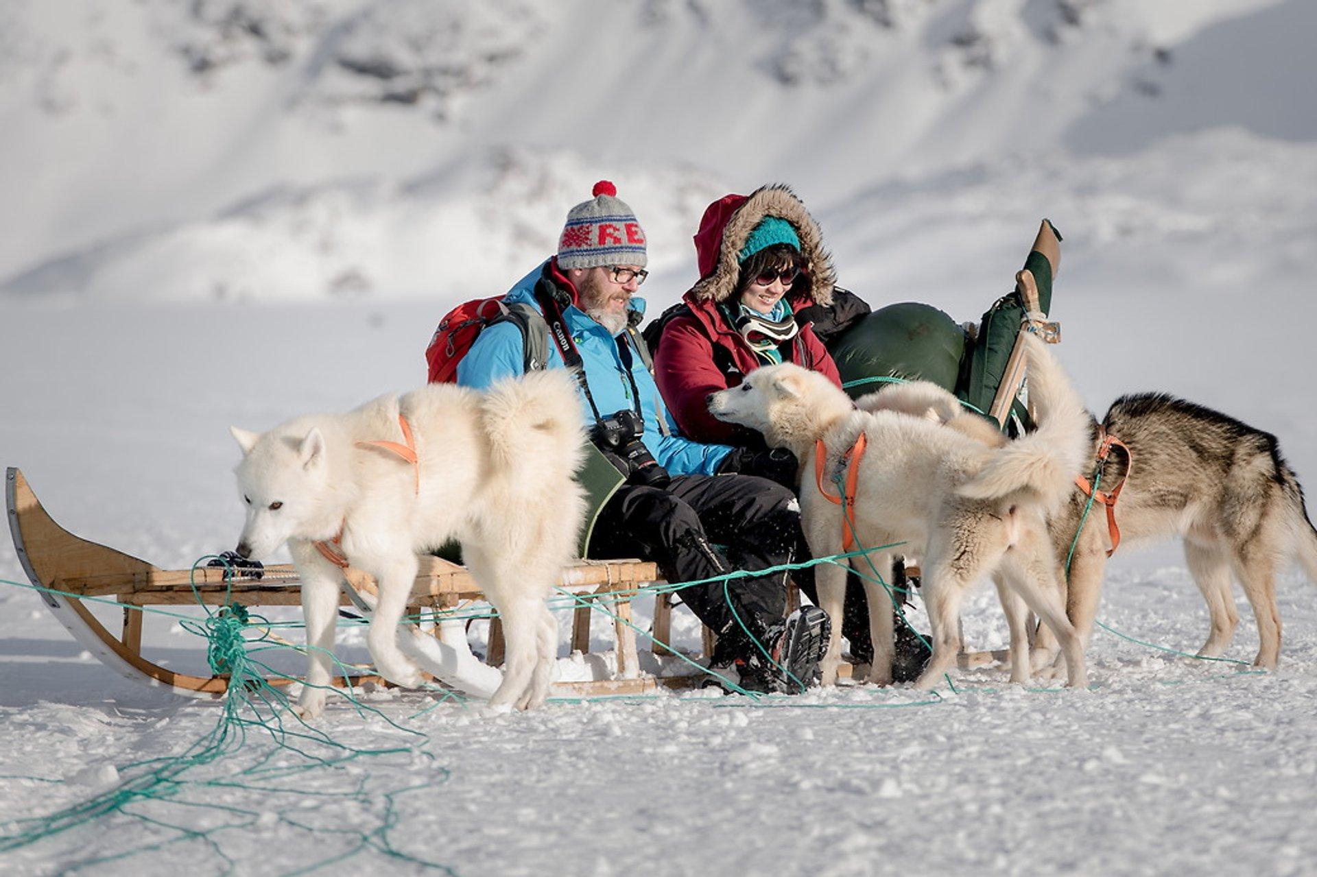 Best time for Dog Sledding 2019