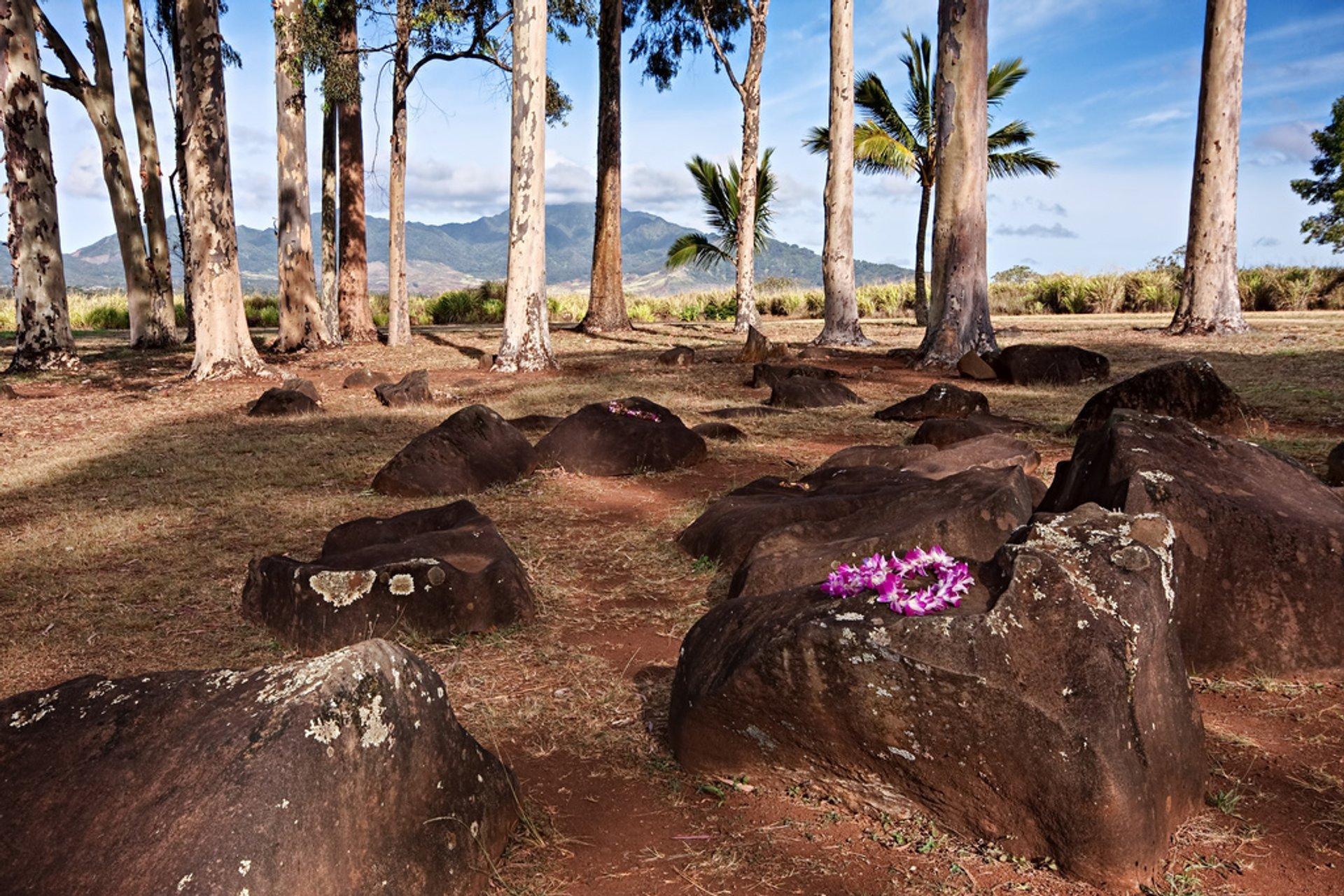 Kukaniloko Birthing Stones in Hawaii - Best Season 2020