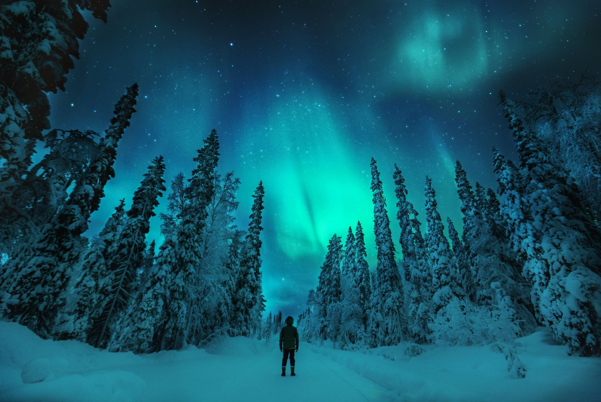 Northern Lights in Finland 2020 - Best Time