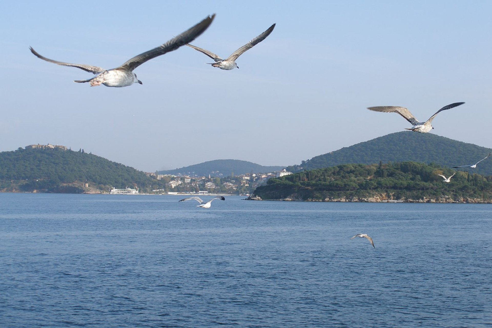 Princes' Islands in Istanbul - Best Time