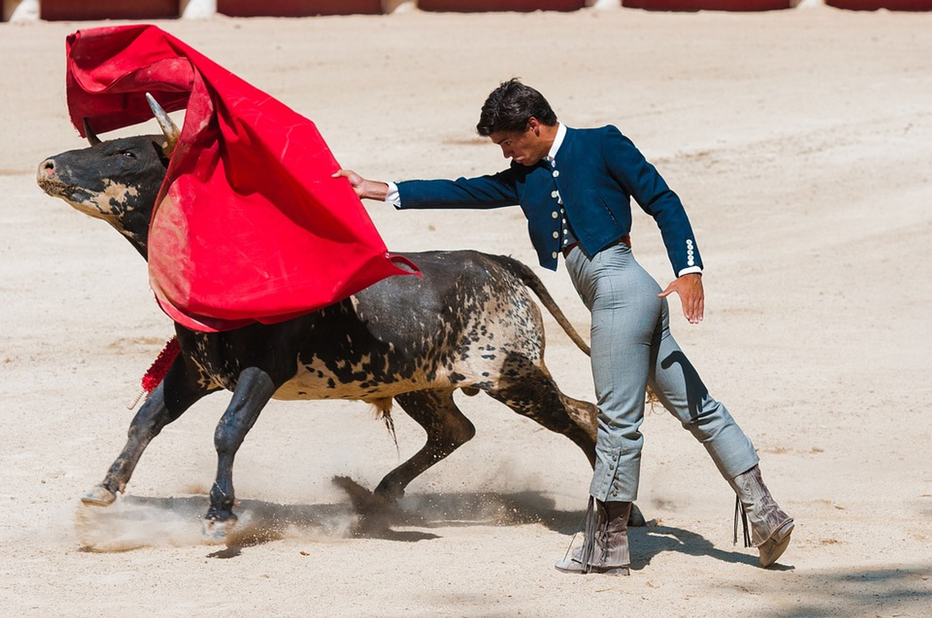 Best time for Bullfights at La Maestranza in Seville 2019