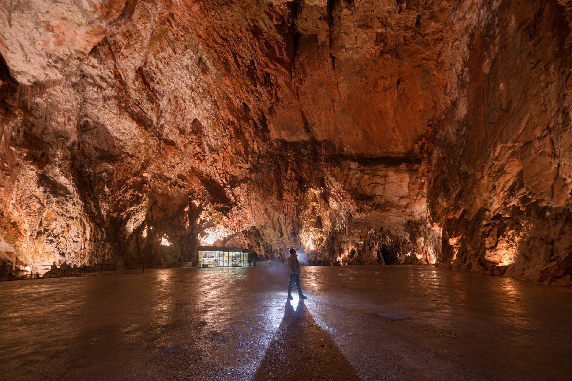 Postojna Cave 2019