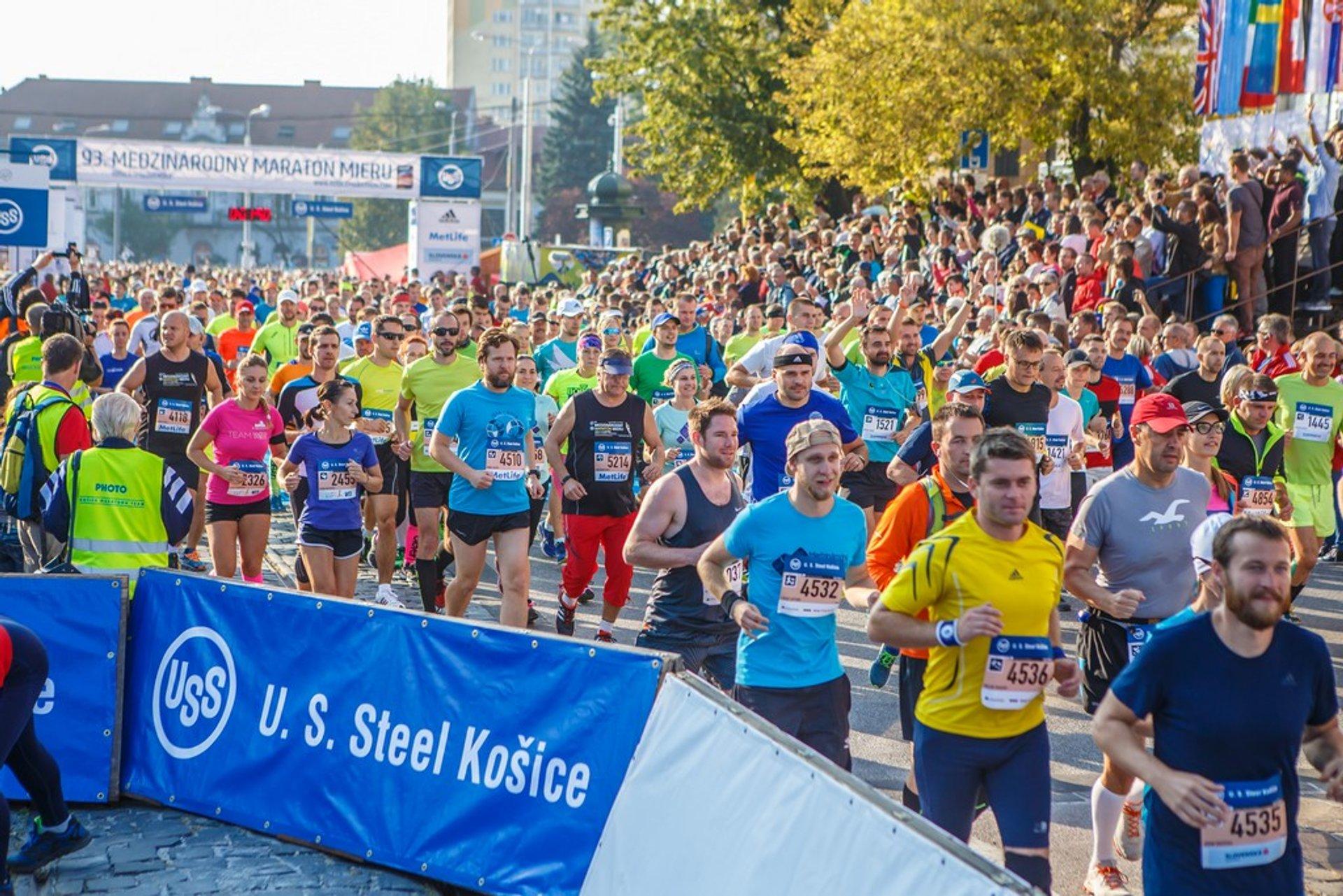 Best time for Košice Peace Marathon in Slovakia