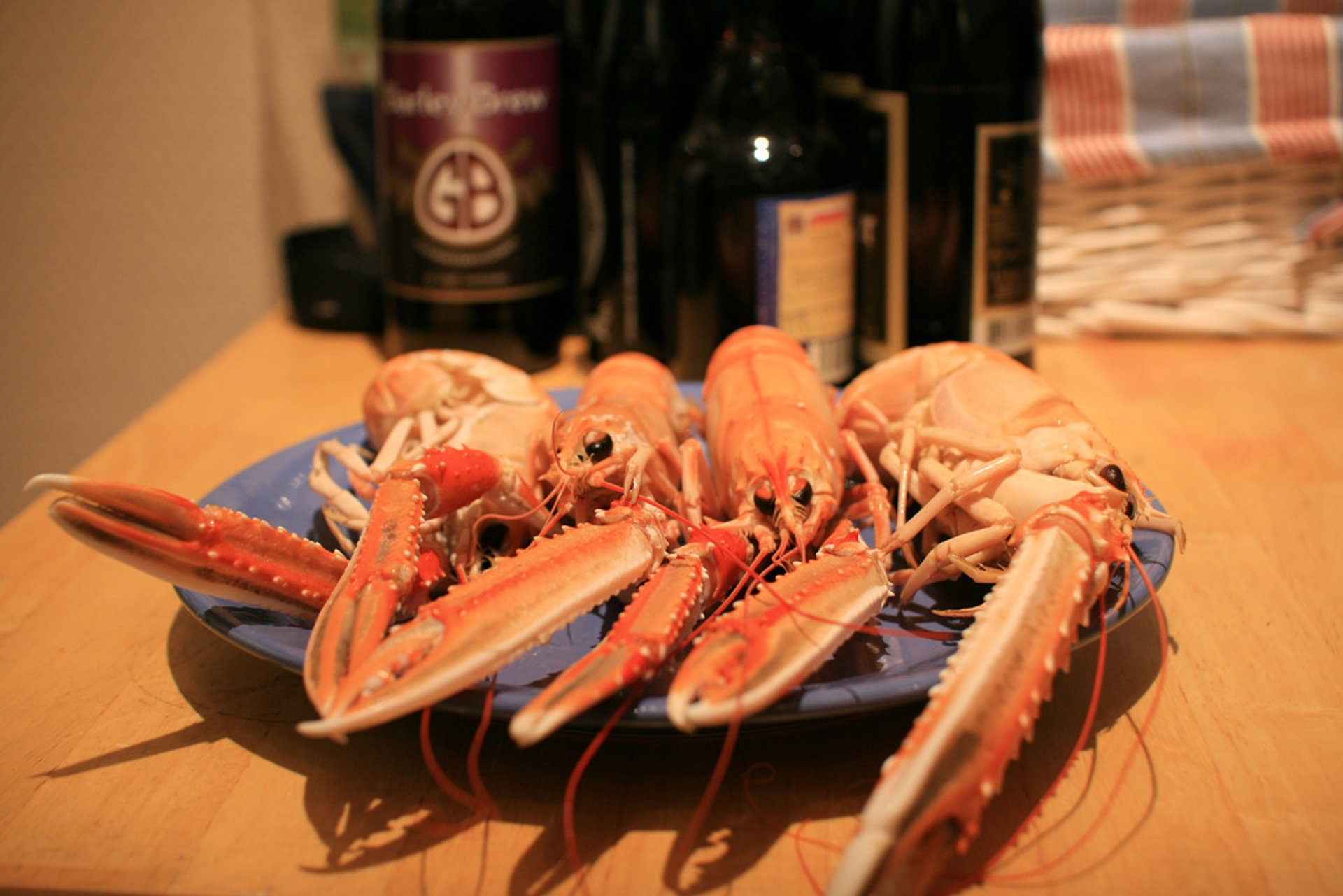 Norwegian Lobster in Norway 2020 - Best Time