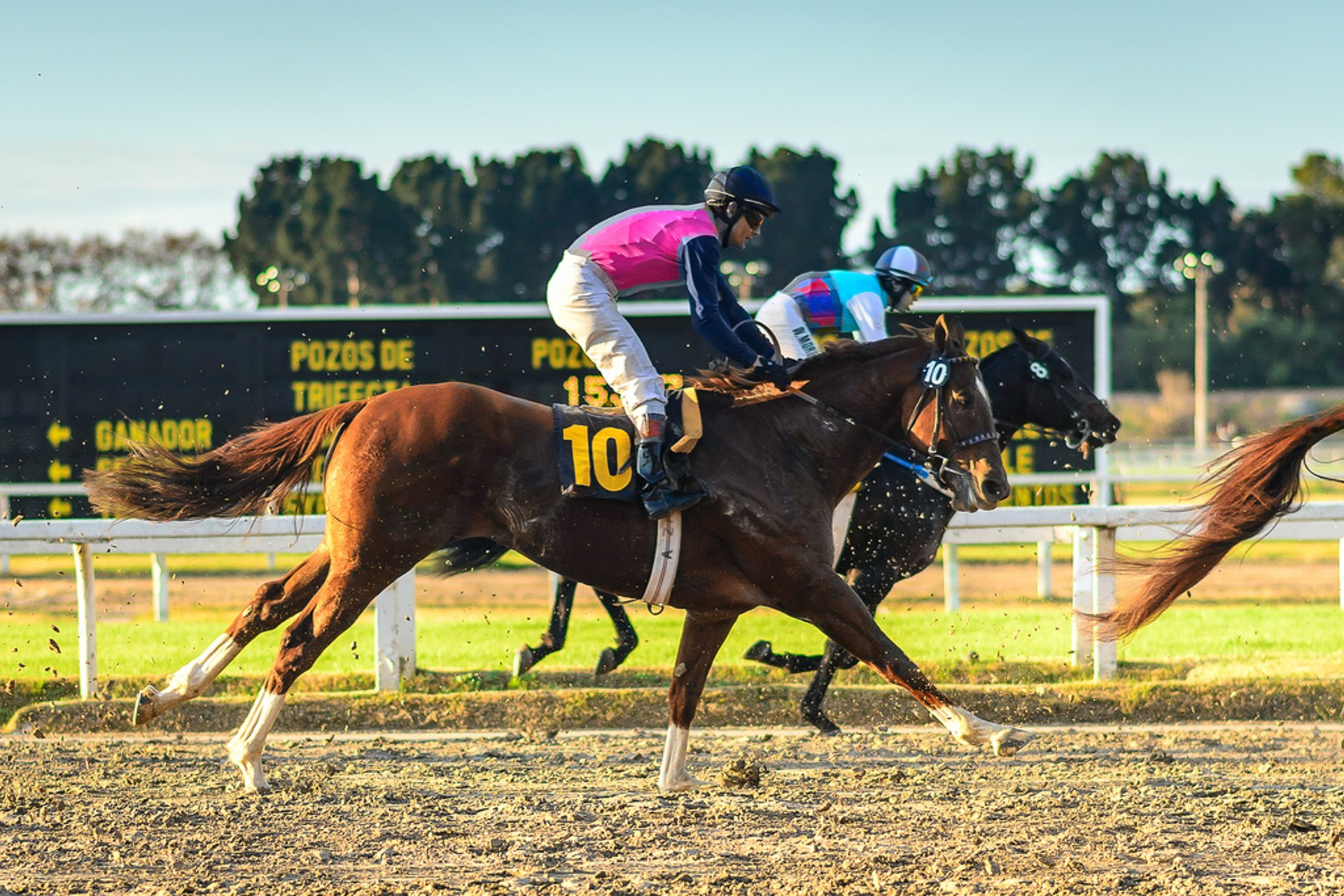 Horse Racing in Buenos Aires - Best Season 2019
