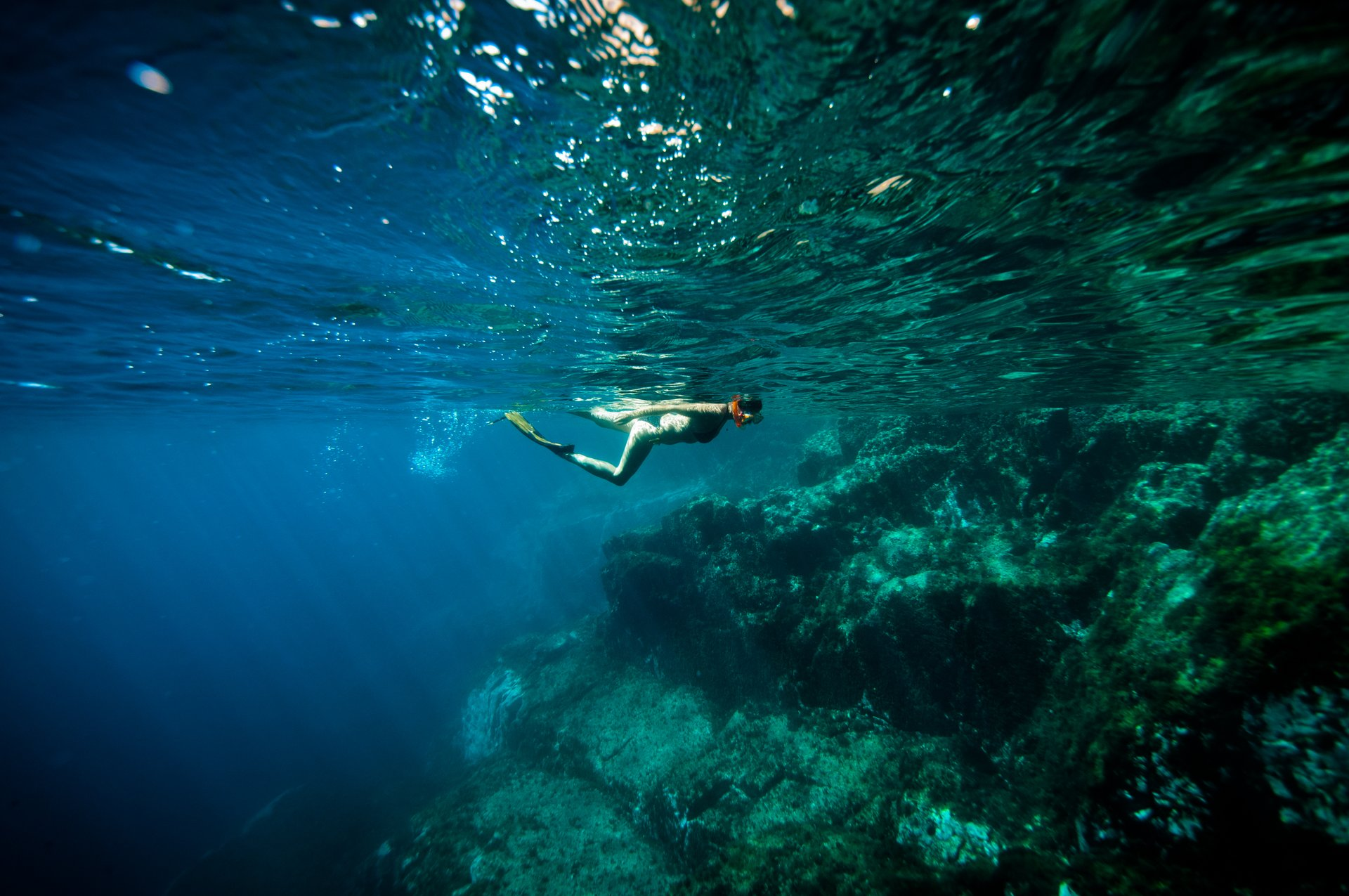 Best time to see Snorkelling and Diving in Corsica 2020