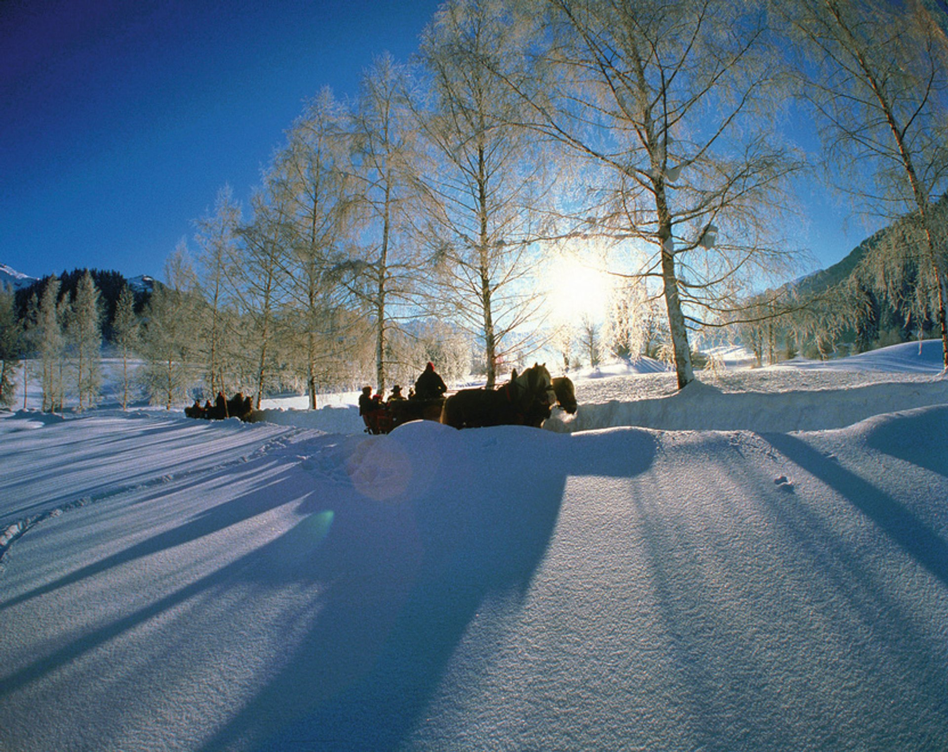 Winter Horse and Sleigh Ride in Austria 2020 - Best Time