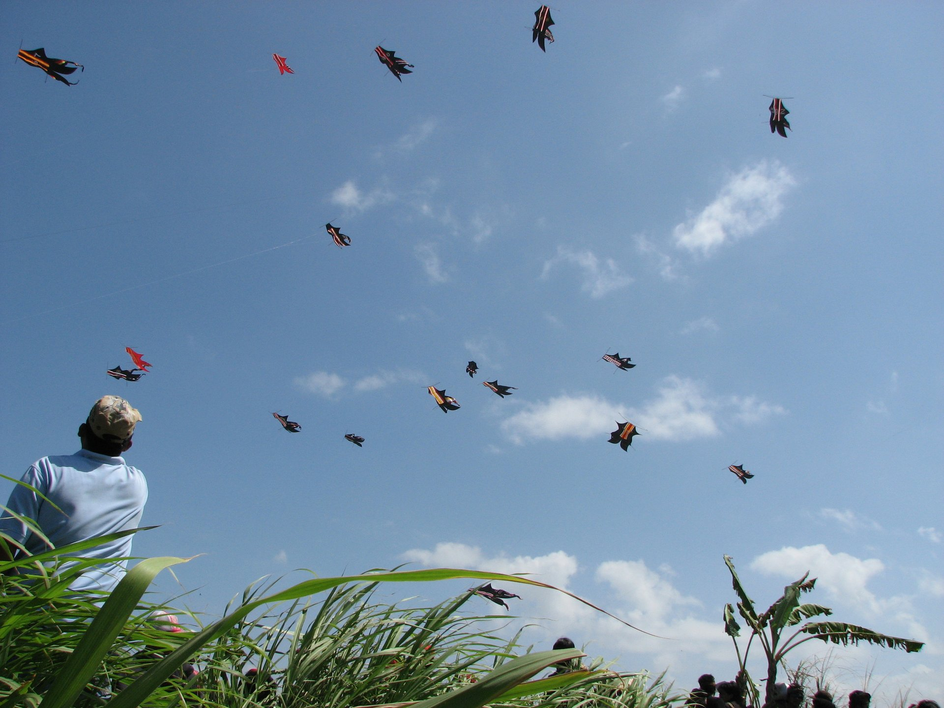 Best time for Bali Kite Festival in Bali