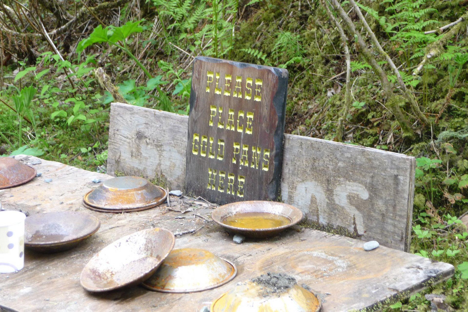 Gold pans in Juneau 2019