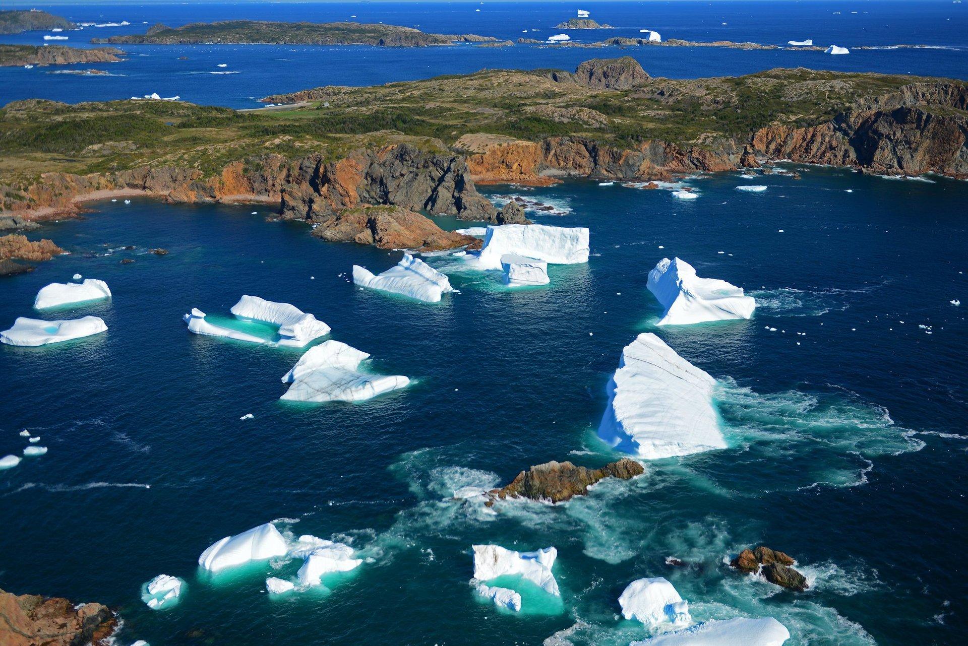 Icebergs off Twillingate 2020