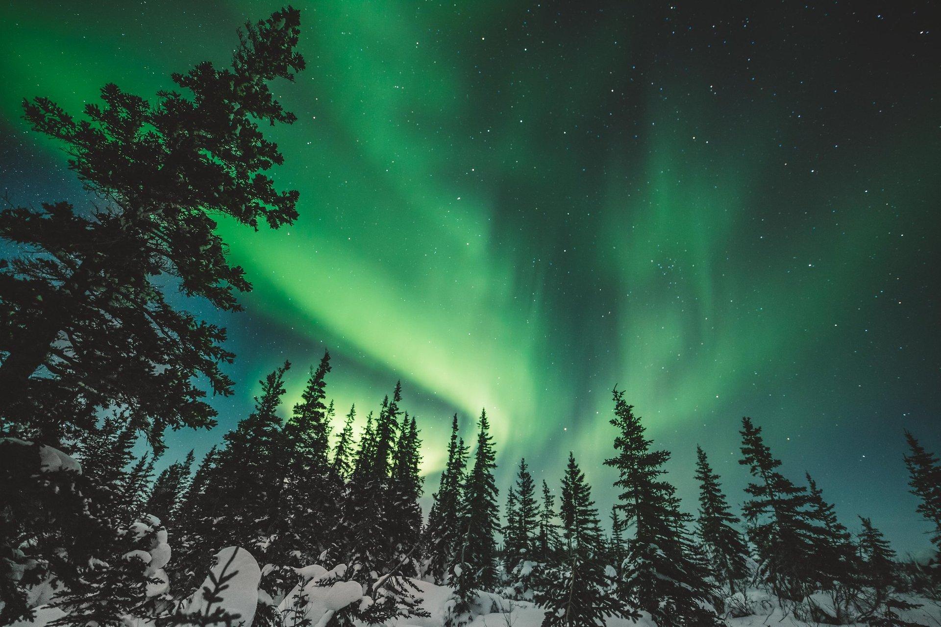 Northern Lights  in Manitoba - Best Season 2020