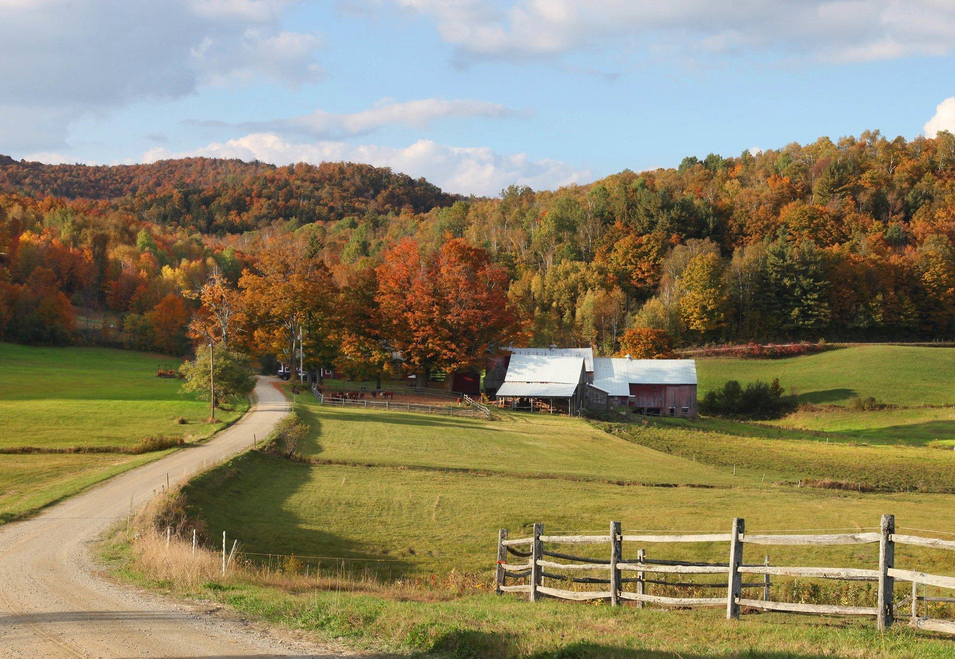 Jenne Farm in Reading, Vermont 2020