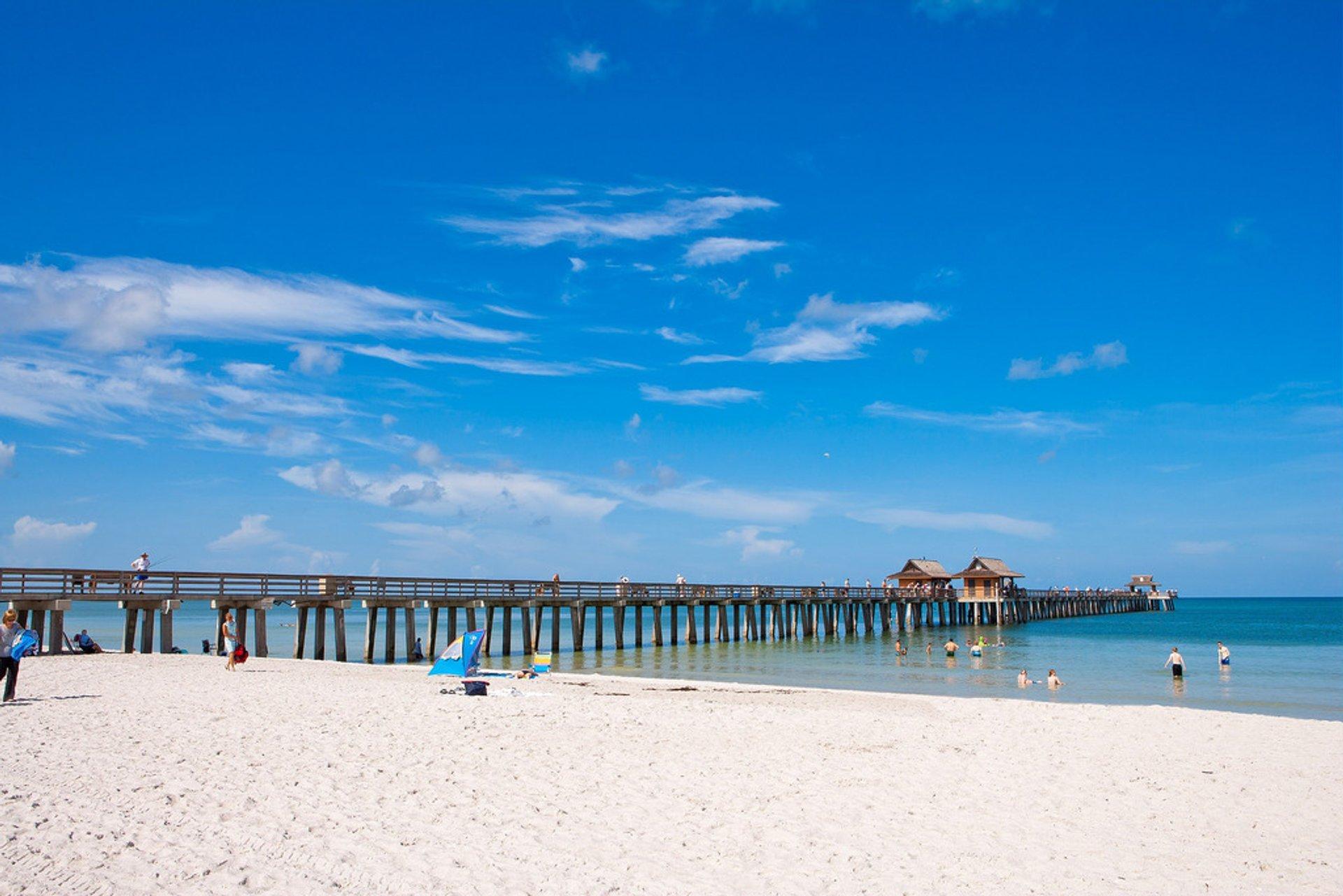 Naples Pier, Naples, Florida 2020
