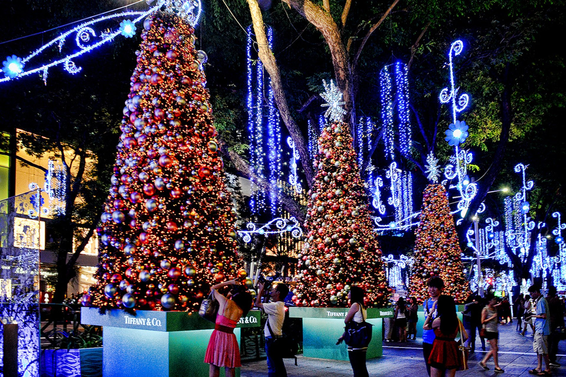 Christmas trees along the pedestrian mall, Ngee Ann City, Singapore 2020