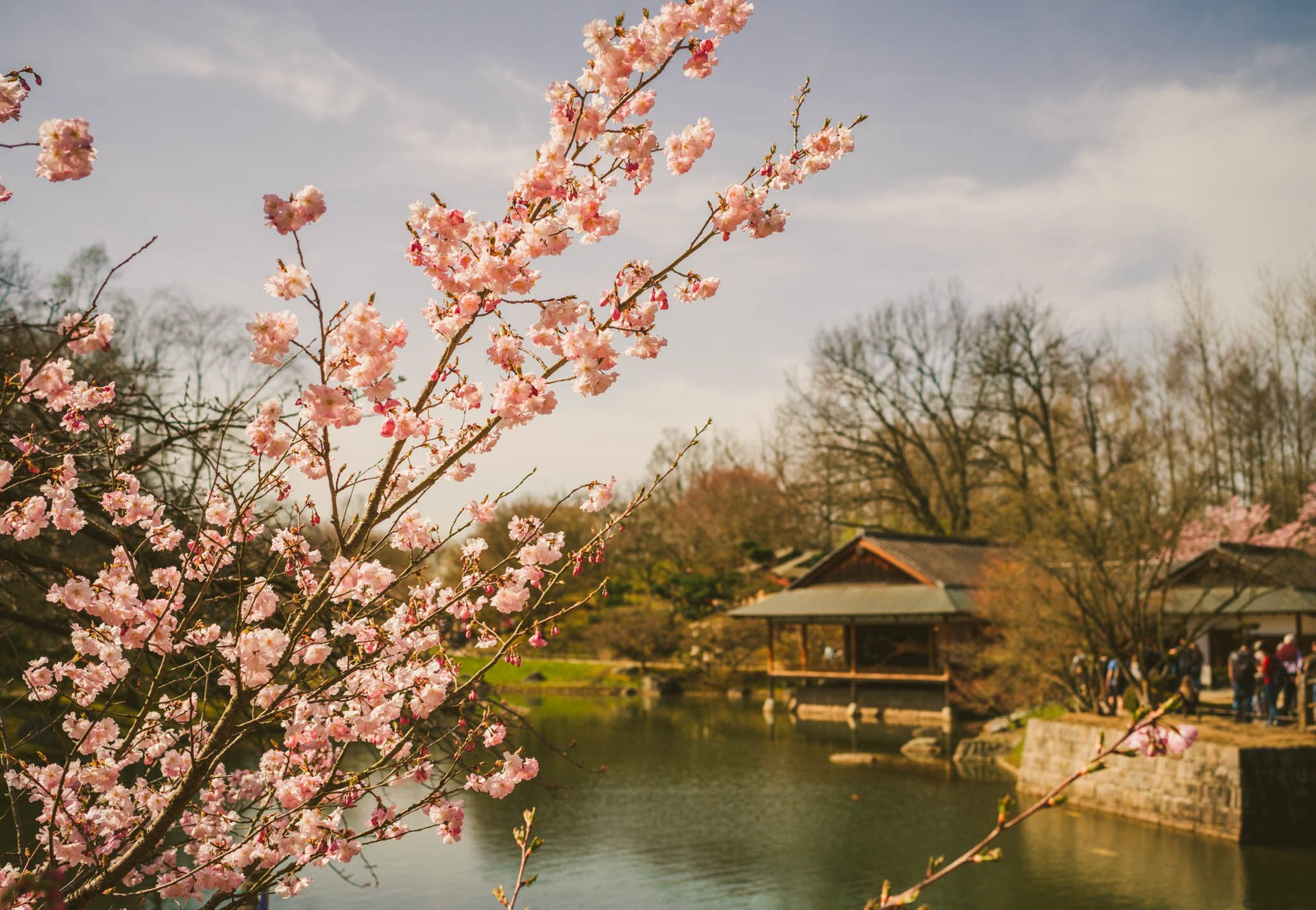 Japanese Garden of Hasselt 2020