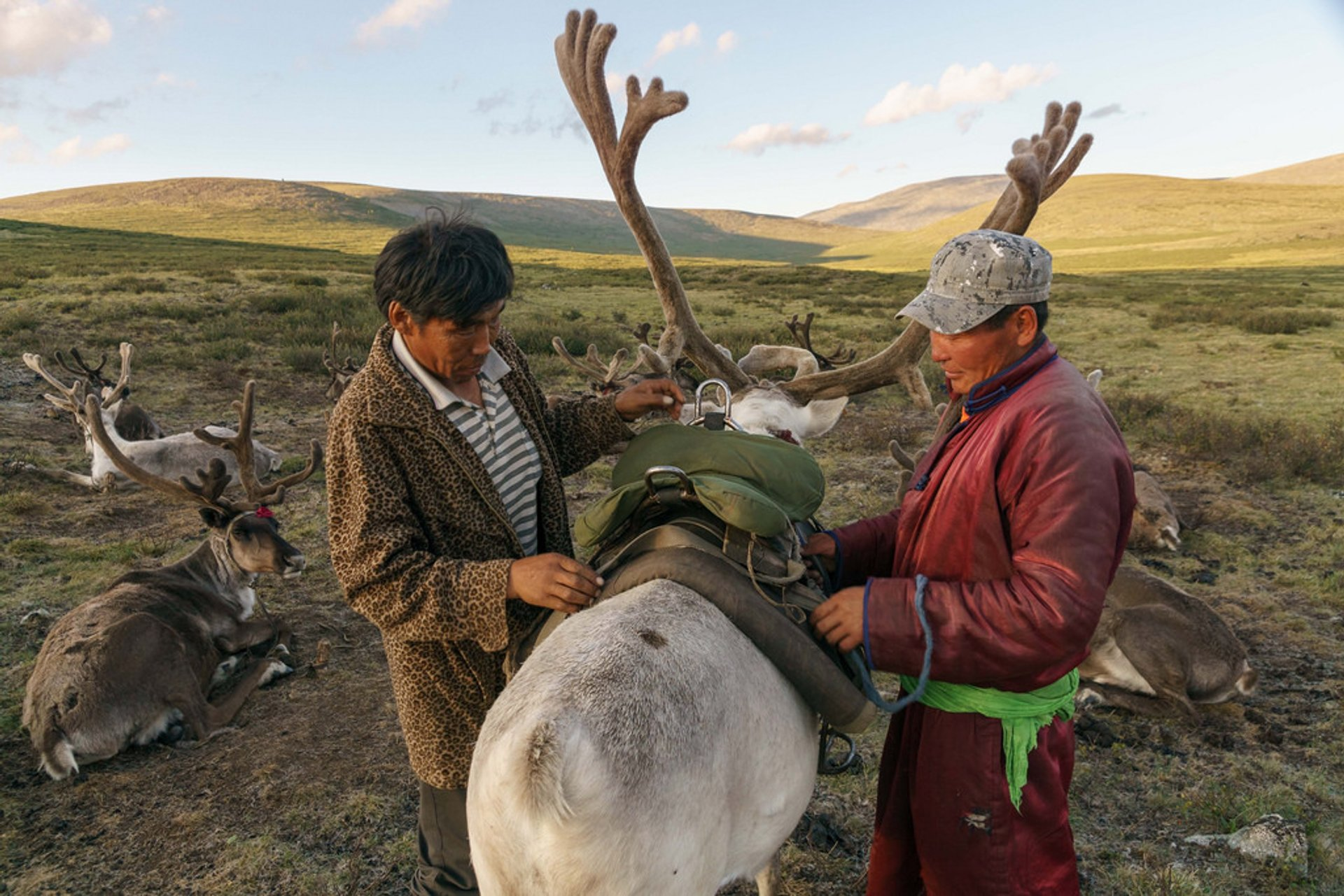 Visiting Tsaatan Tribe in Mongolia - Best Season