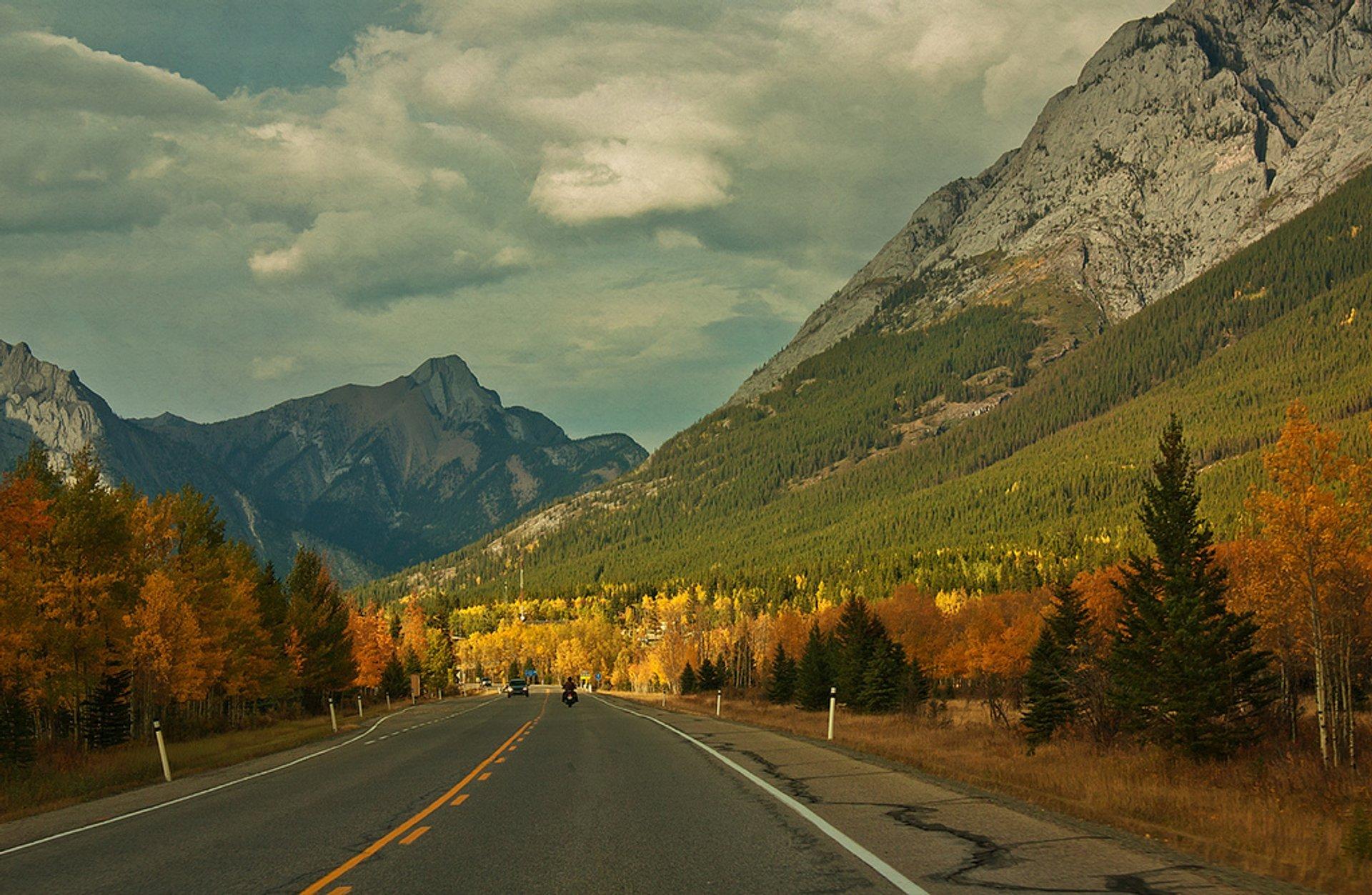 Highway #40 going north, Kananaskis country, Alberta, Canada 2019