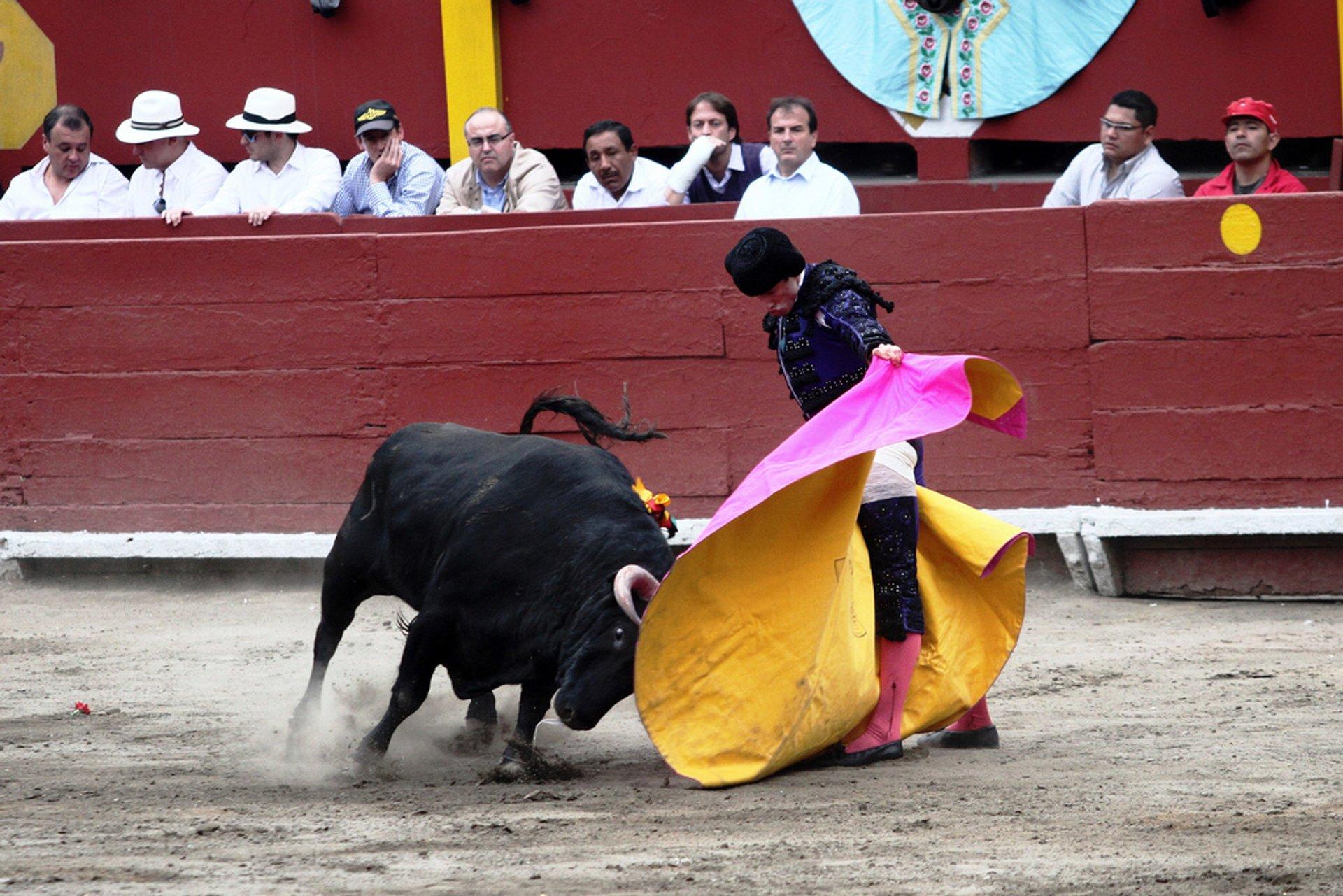 Bullfighting Season in Lima in Peru - Best Season 2020