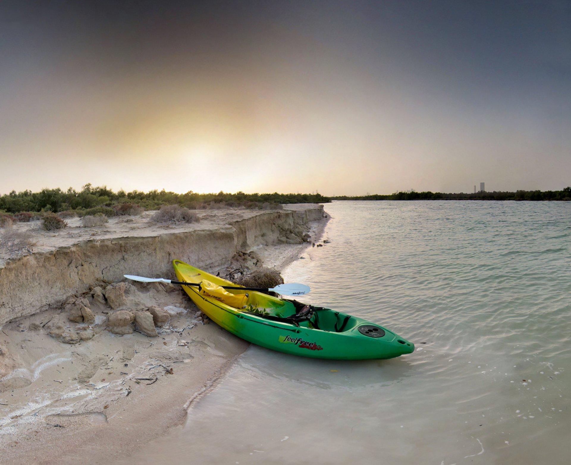 Abu Dhabi mangrove 2020