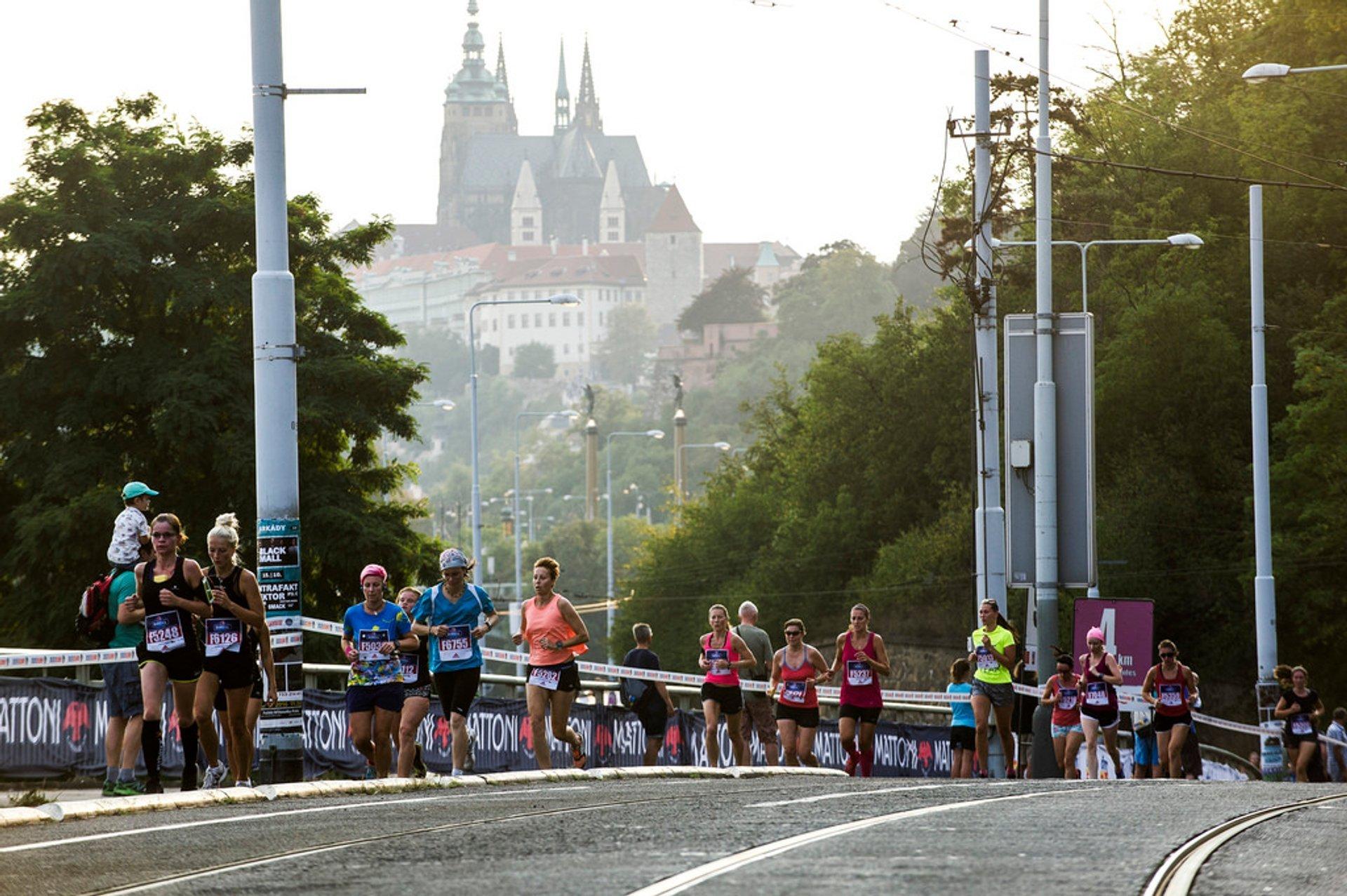 Best time for Birell Prague Grand Prix 2019