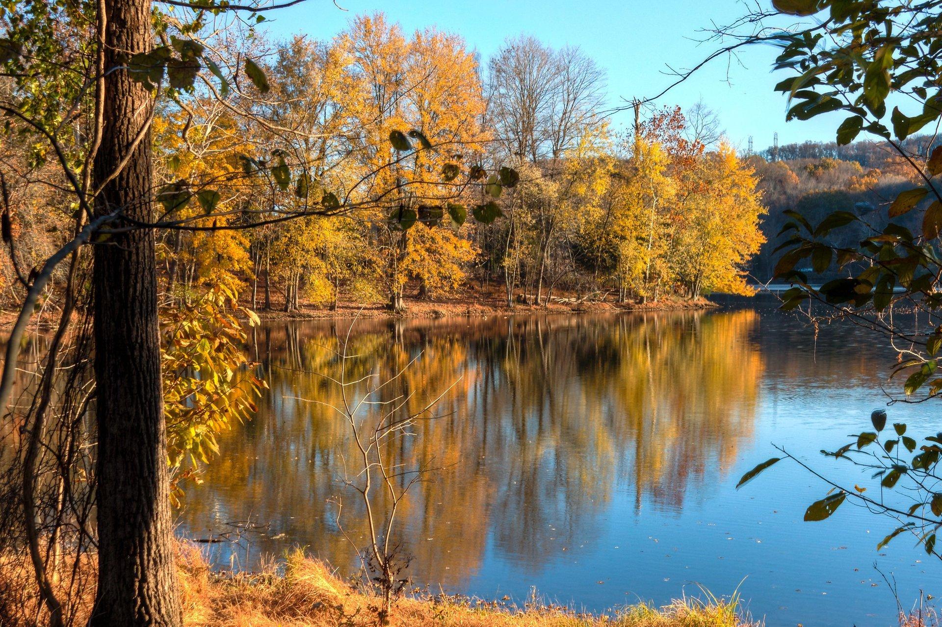 Radnor Lake in fall 2020