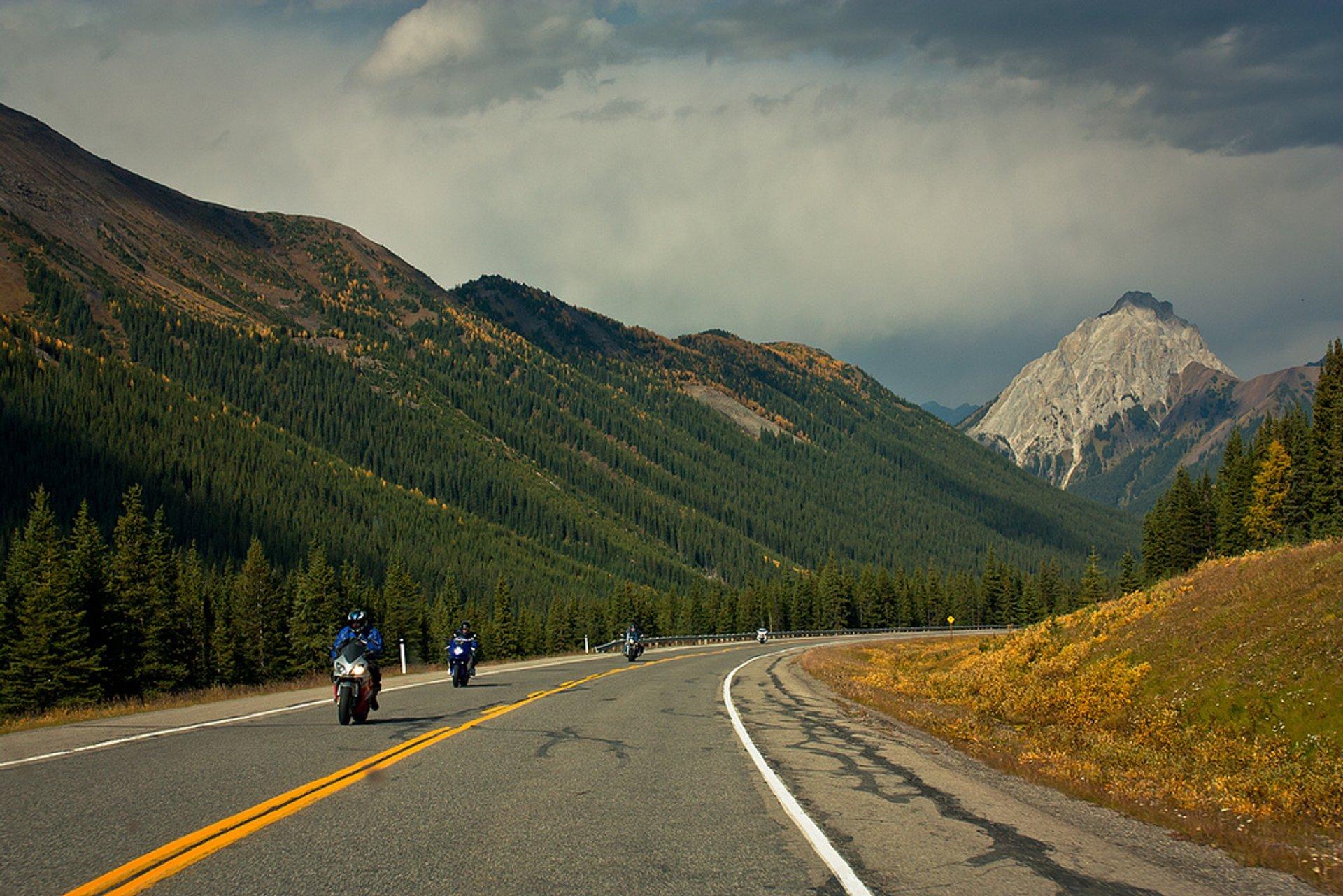 Alberta Highway 40 in Alberta 2019 - Best Time