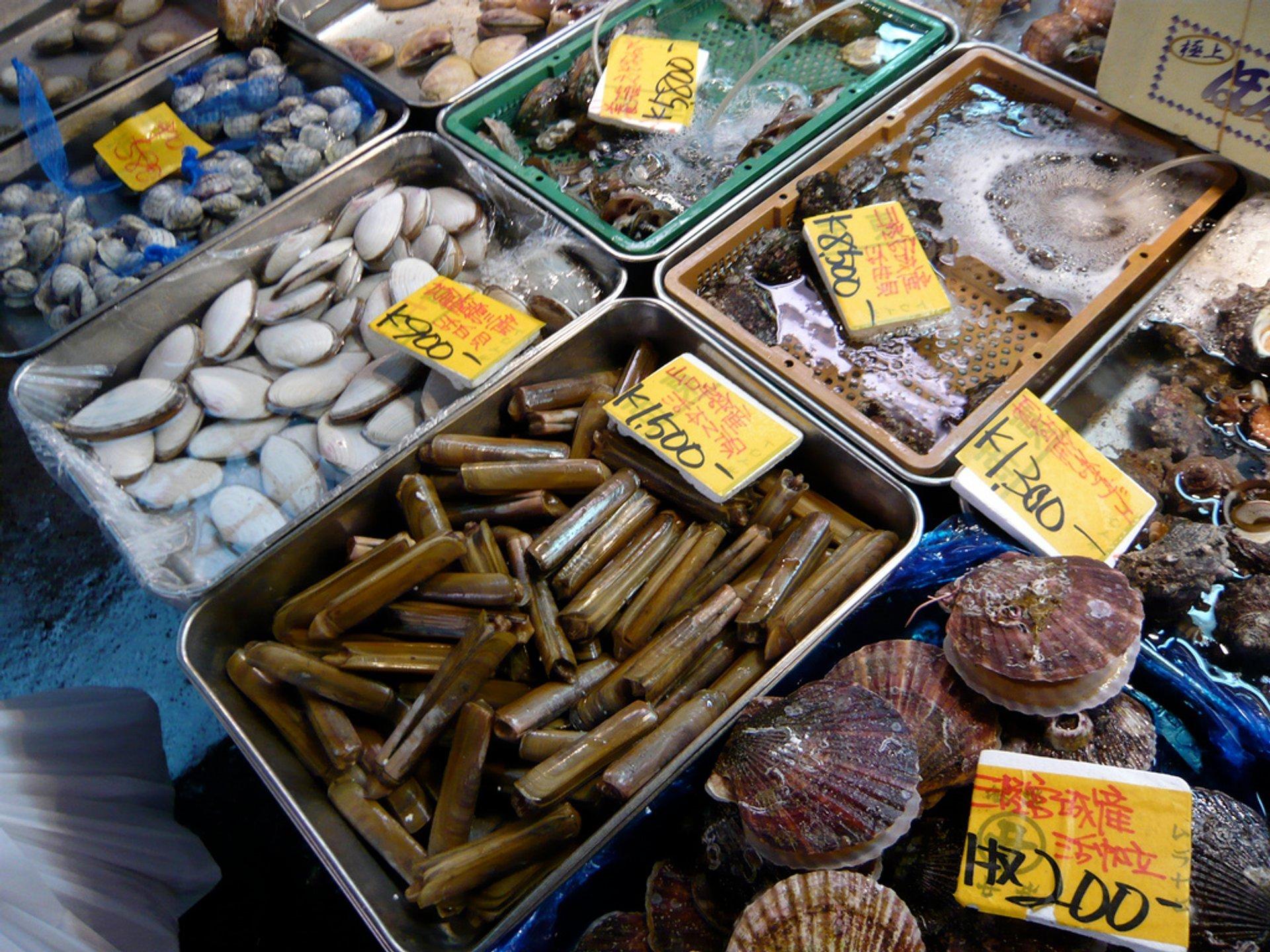 Toyosu Market in Tokyo - Best Season 2020