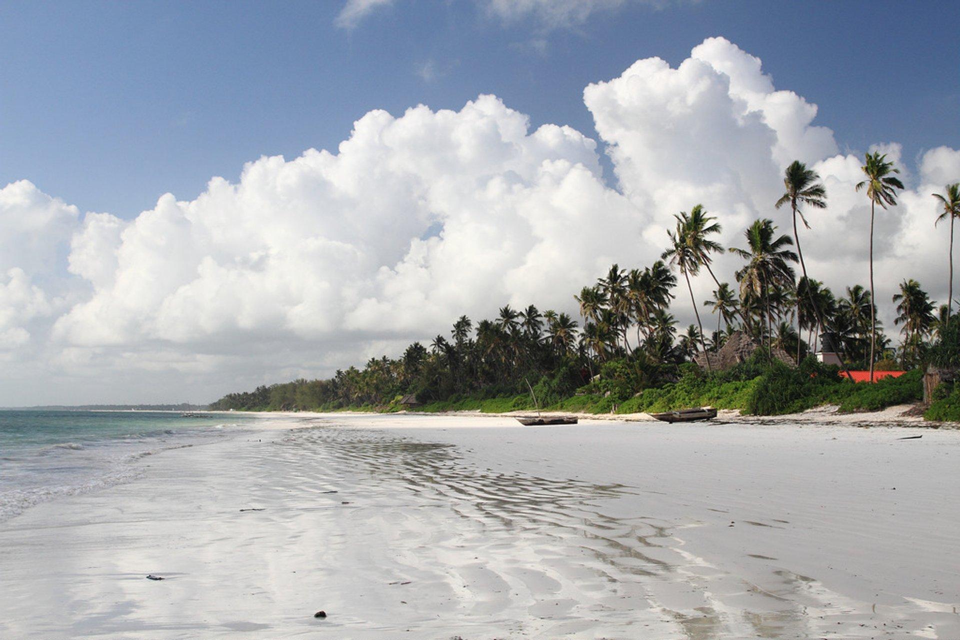 Beach Season in Tanzania - Best Season 2020