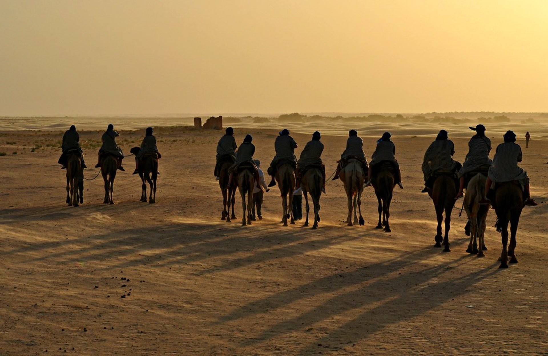 Sahara Camel Trekking  in Tunisia - Best Season 2020
