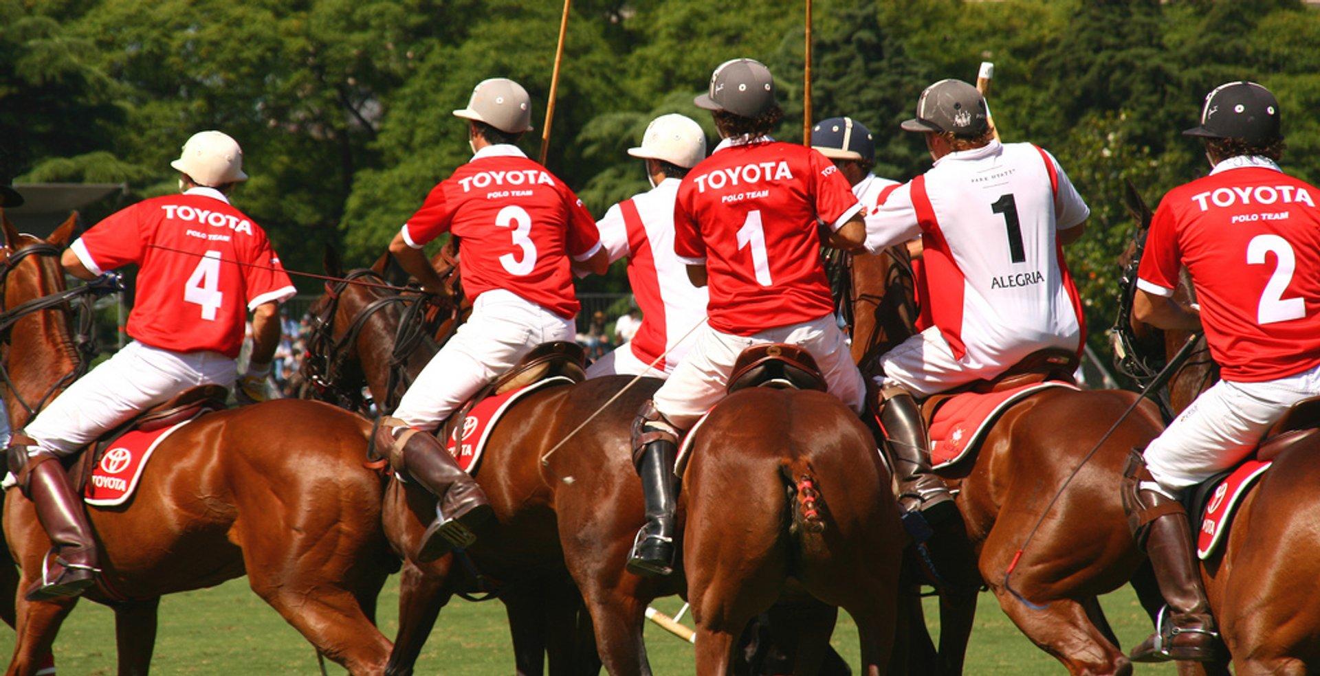 Campeonato Argentino Abierto de Polo (Argentine Polo Open Championship) in Buenos Aires - Best Season 2020