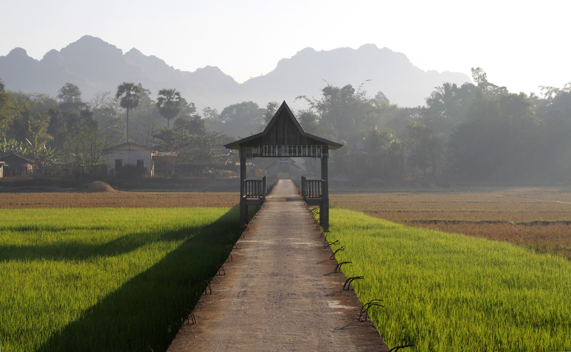 Rice paddies under causeway near Hpa-An 2020