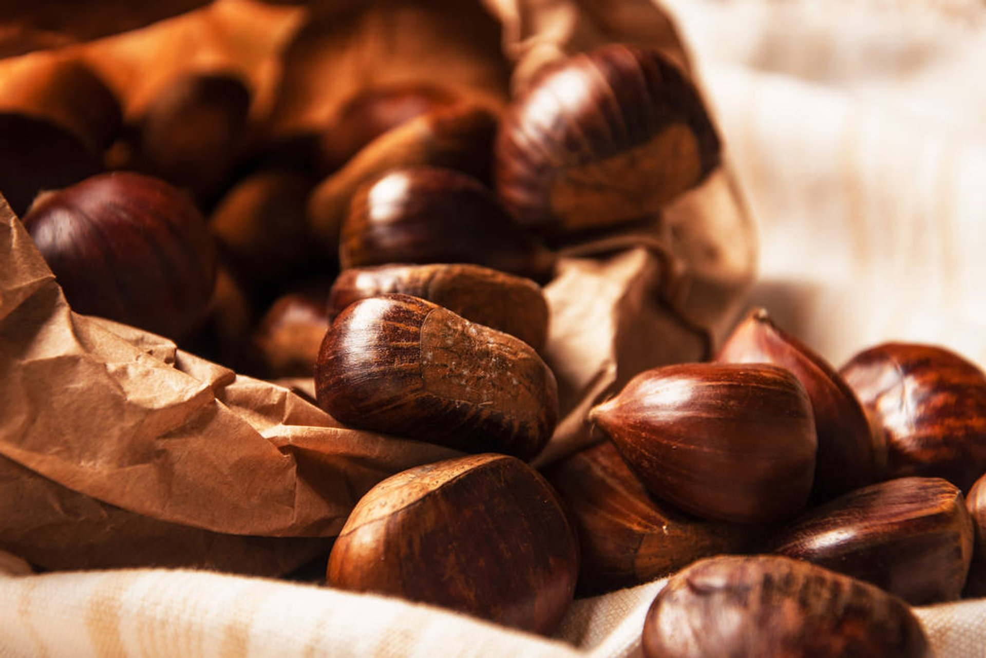Sicilian Chestnuts in Sicily 2020 - Best Time