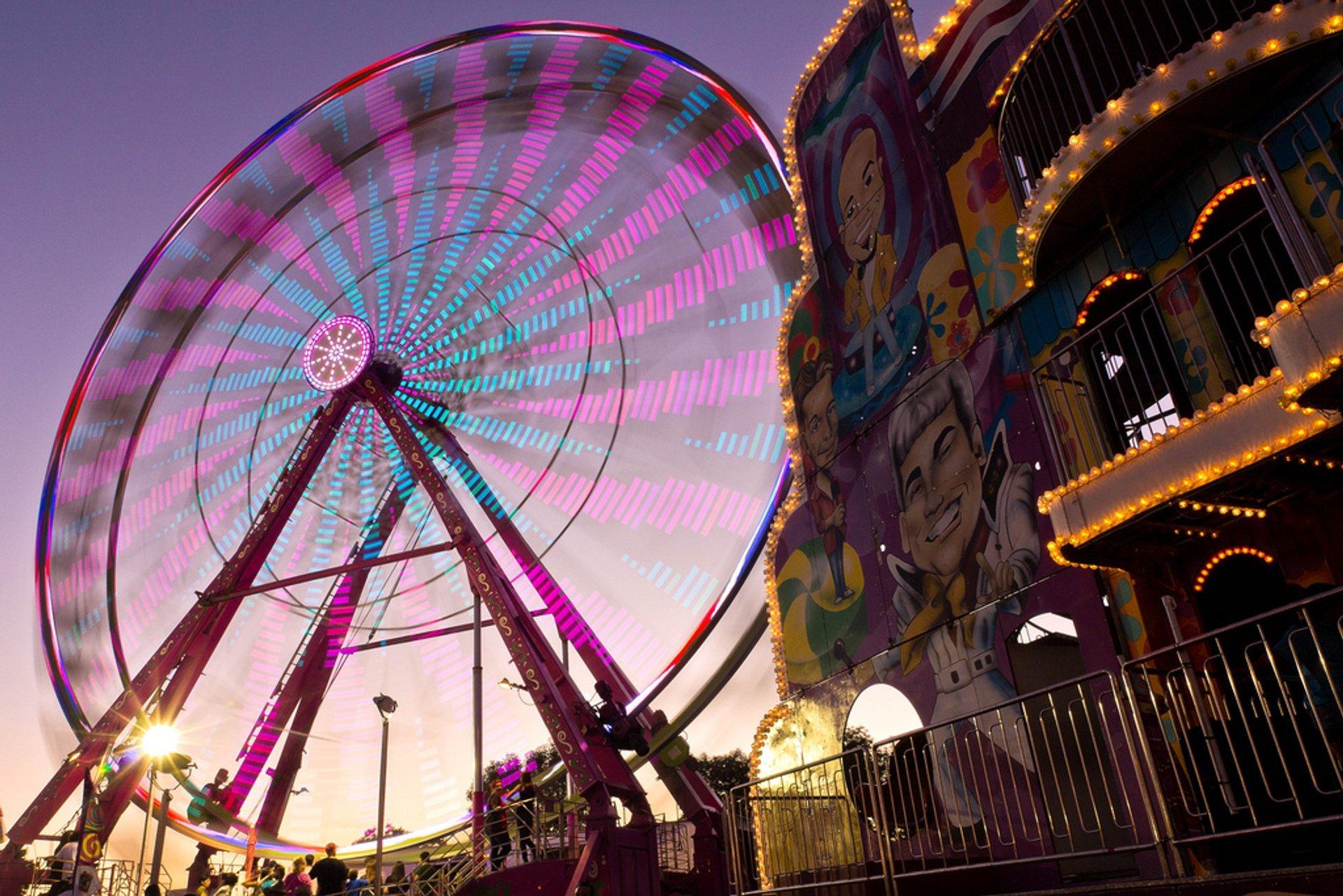 Spinning Ferris Wheel 2020