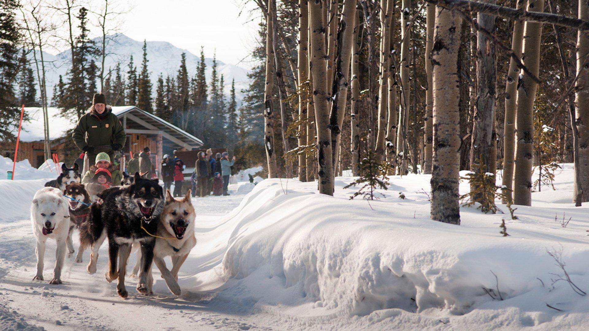 Best time for Denali Winterfest in Alaska 2020
