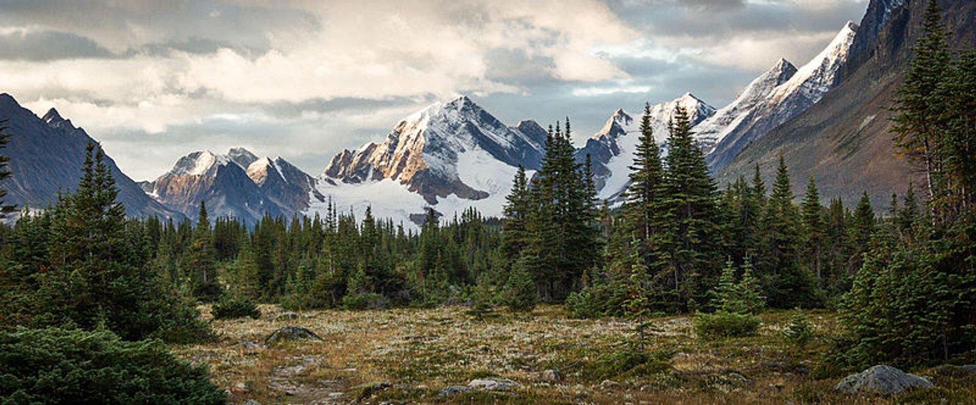 Tonquin Valley Hike in Banff & Jasper National Parks - Best Season 2020