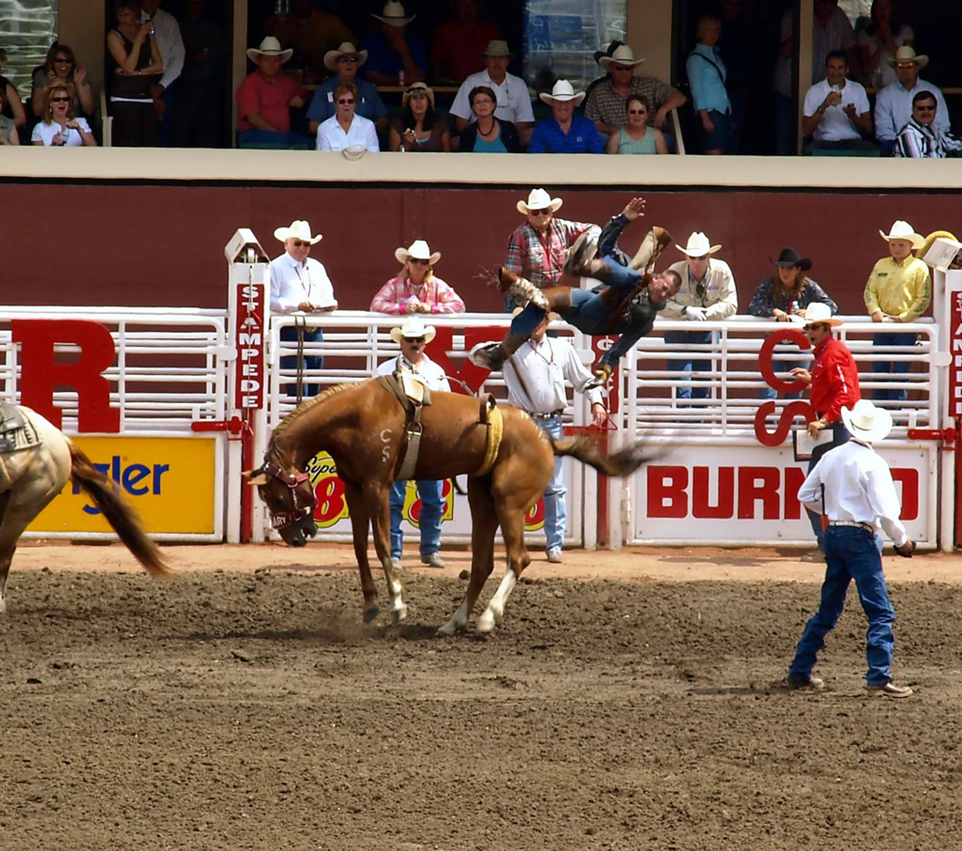 Best time for Calgary Stampede in Calgary 2020