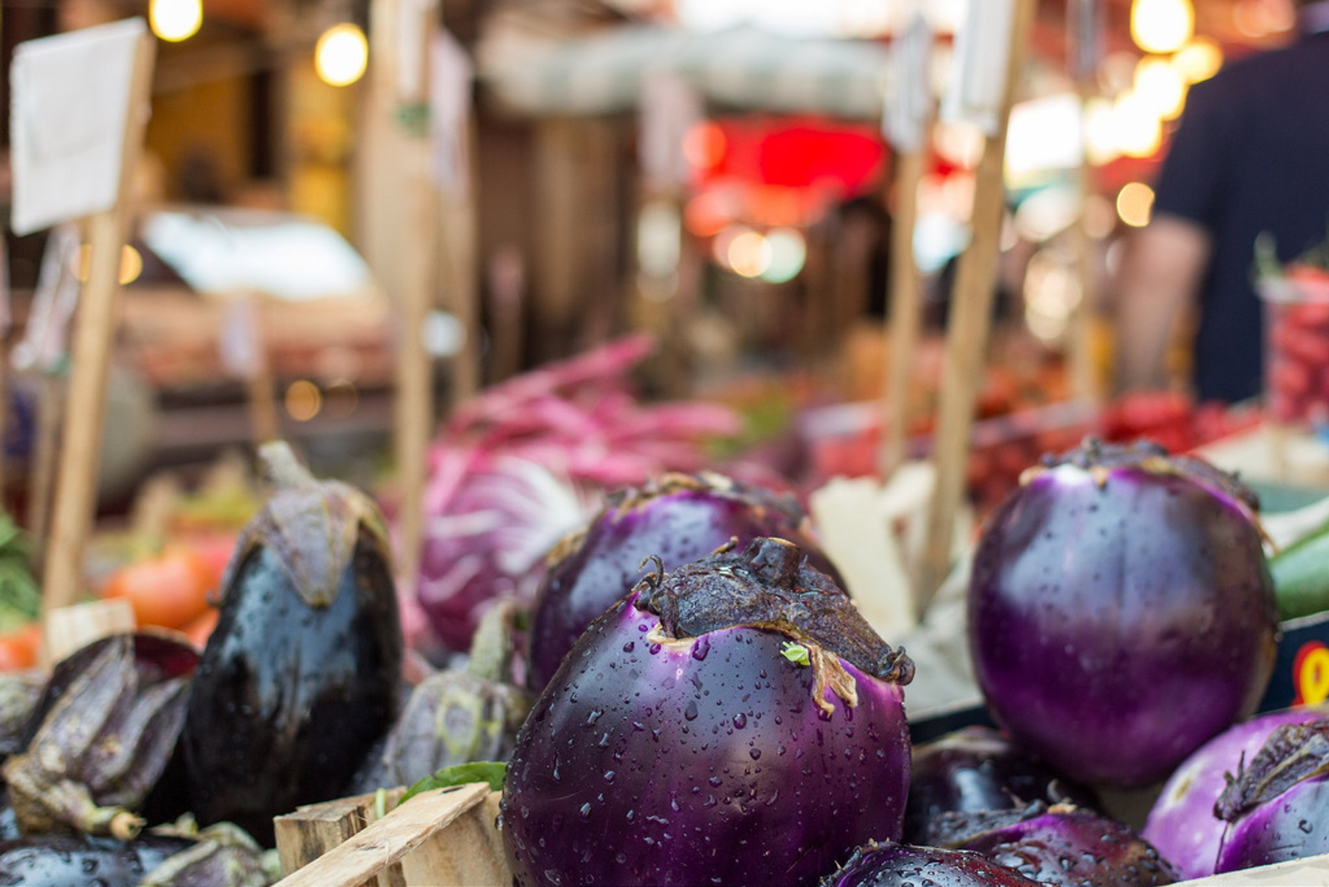 Best time for Aubergine Season in Italy 2019