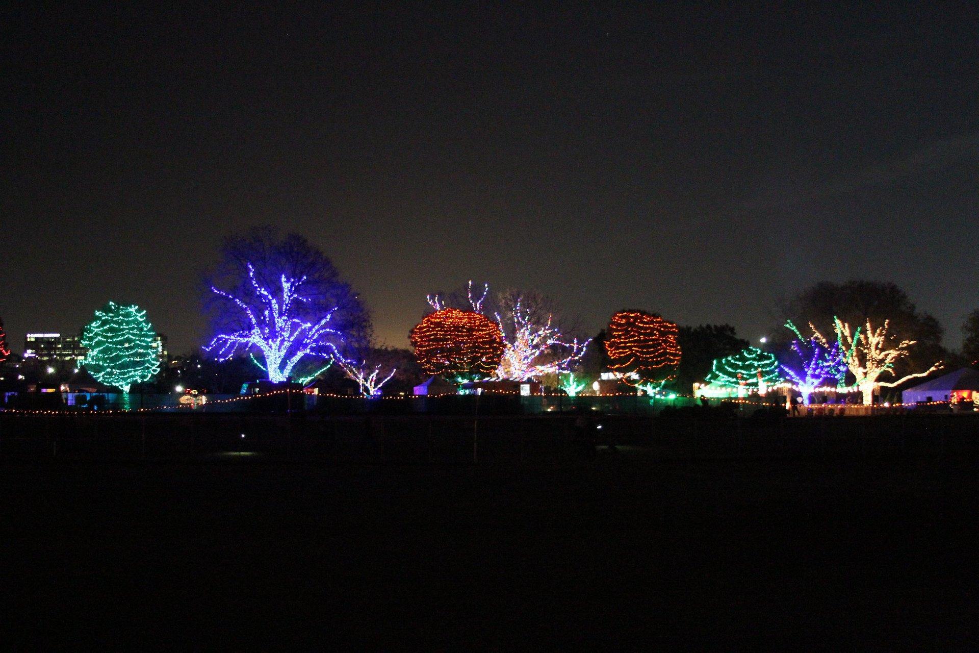 Zilker Park display 2020