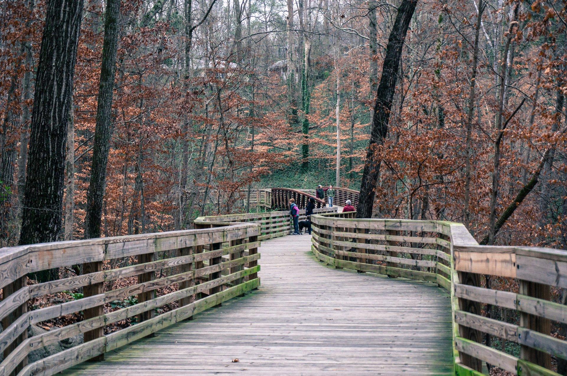 S Peachtree Creek Trail 2020