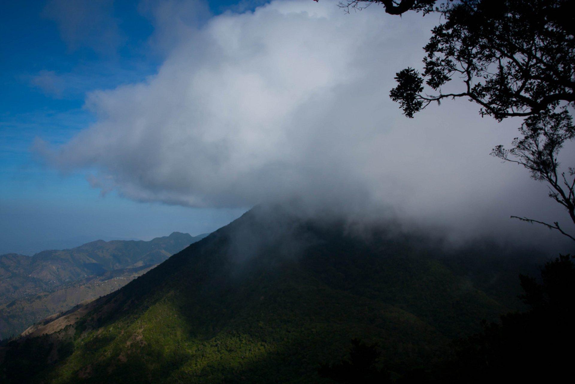 Hiking Blue Mountain Peak in Jamaica - Best Season 2020