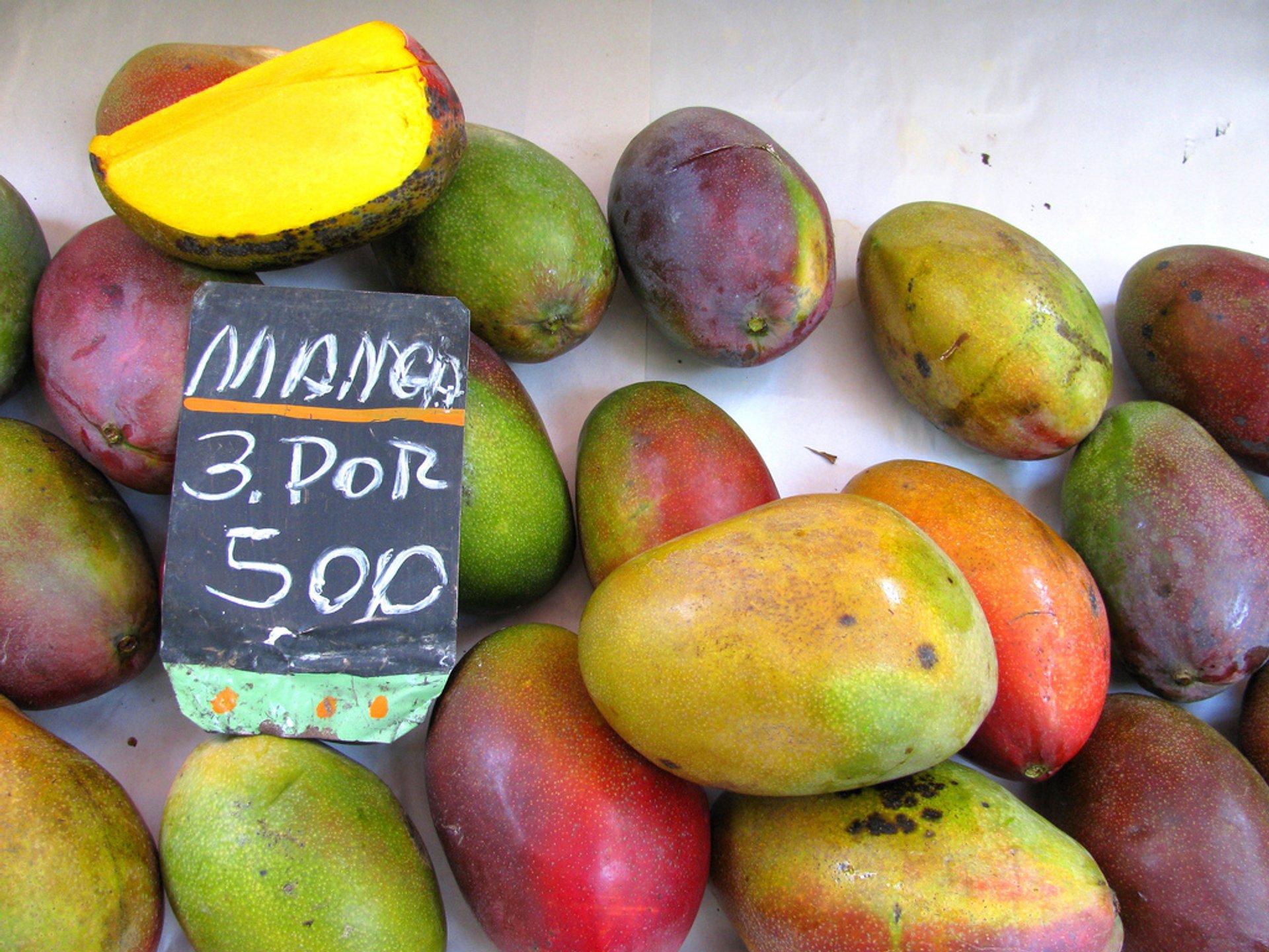 Mango in Rio de Janeiro 2020 - Best Time
