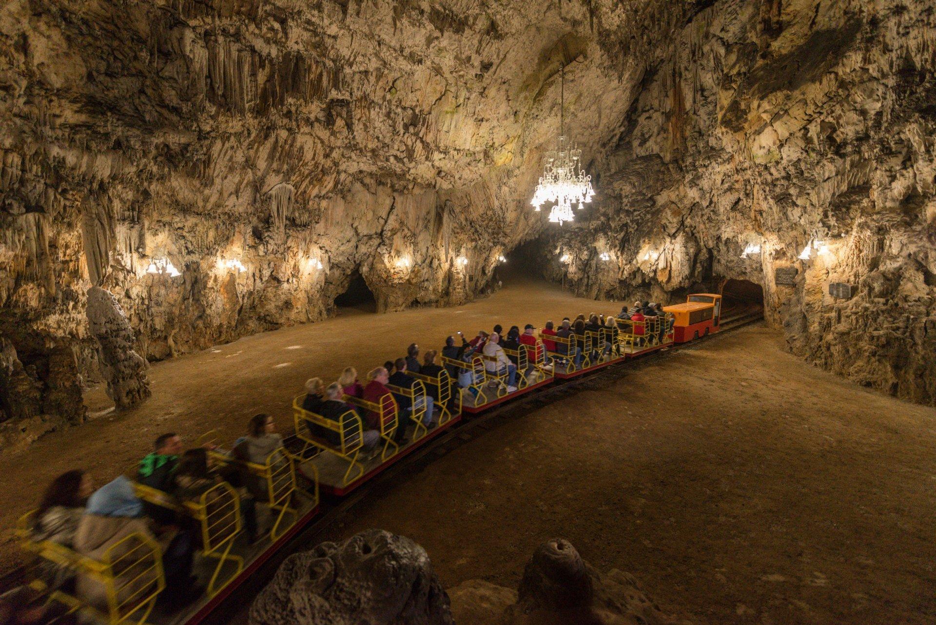 Postojna Cave 2020
