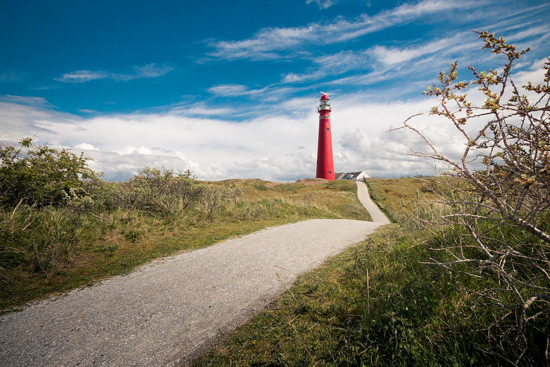 Schiermonnikoog in The Netherlands 2019 - Best Time