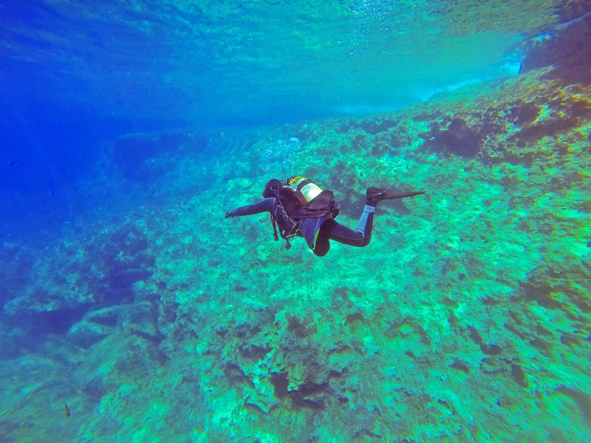 Diving in Malta 2020 - Best Time