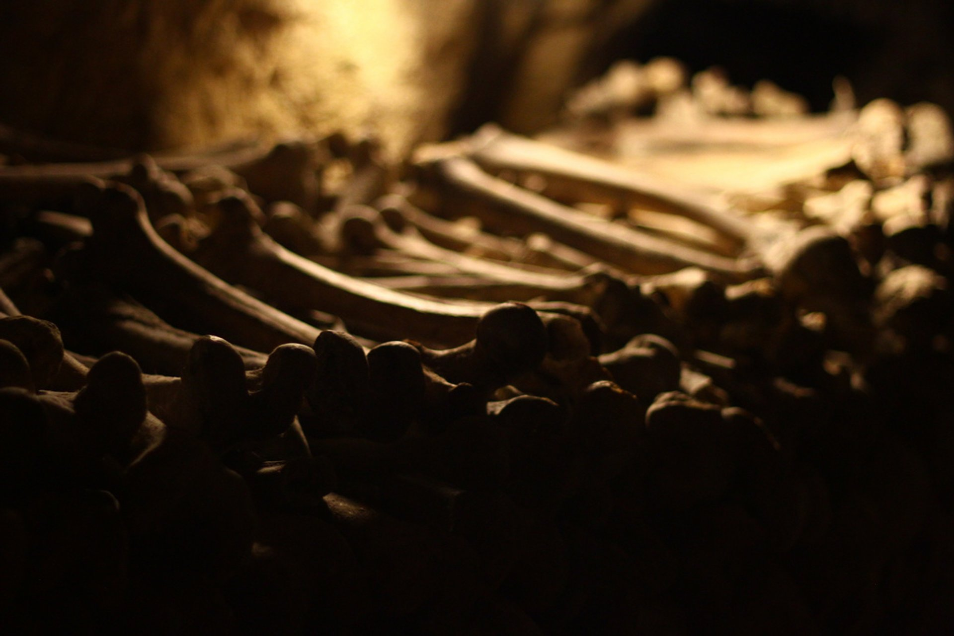 Best time for Catacombs: Shorter Waiting Time in Paris 2020