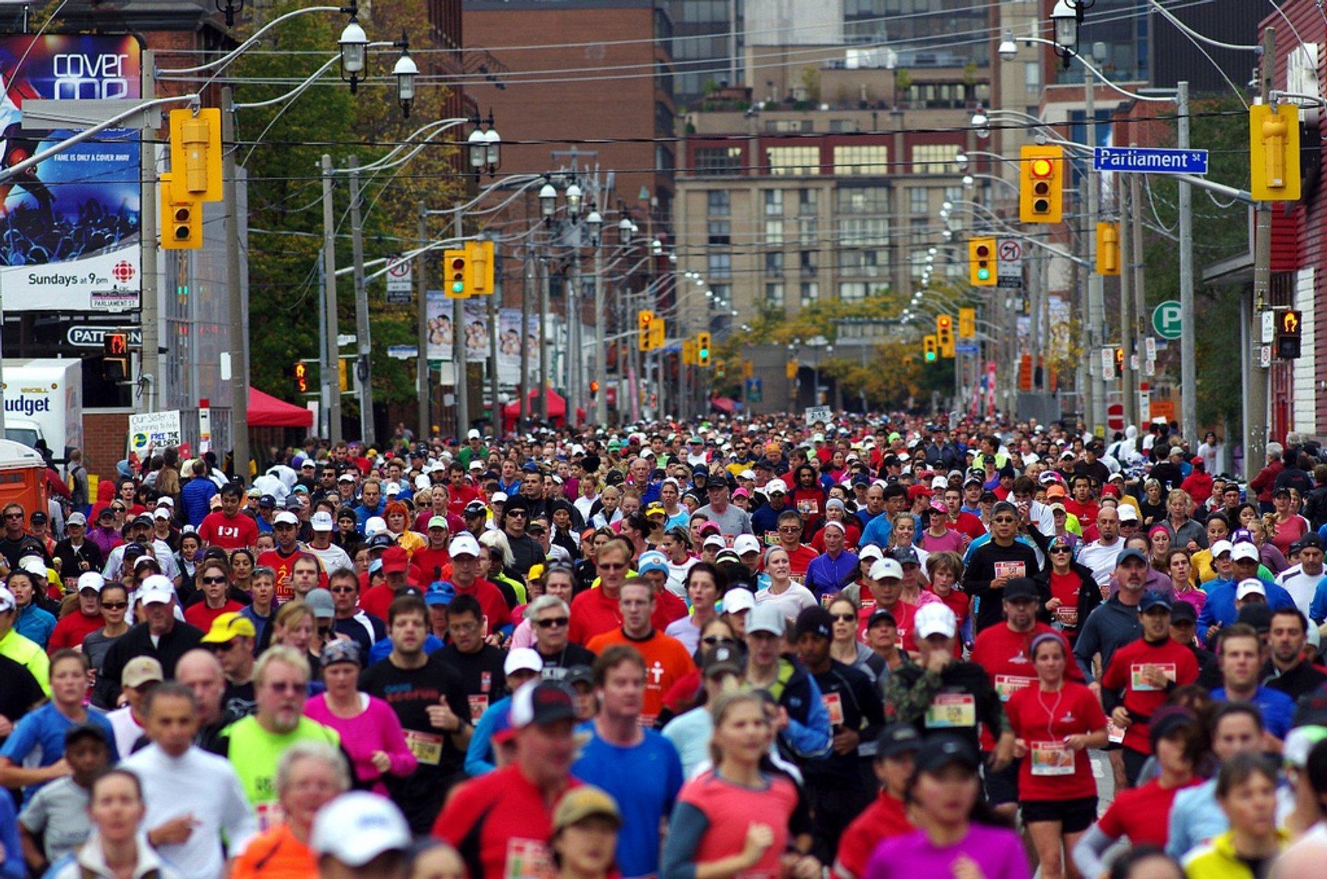 Best time for Toronto Waterfront Marathon in Toronto 2020