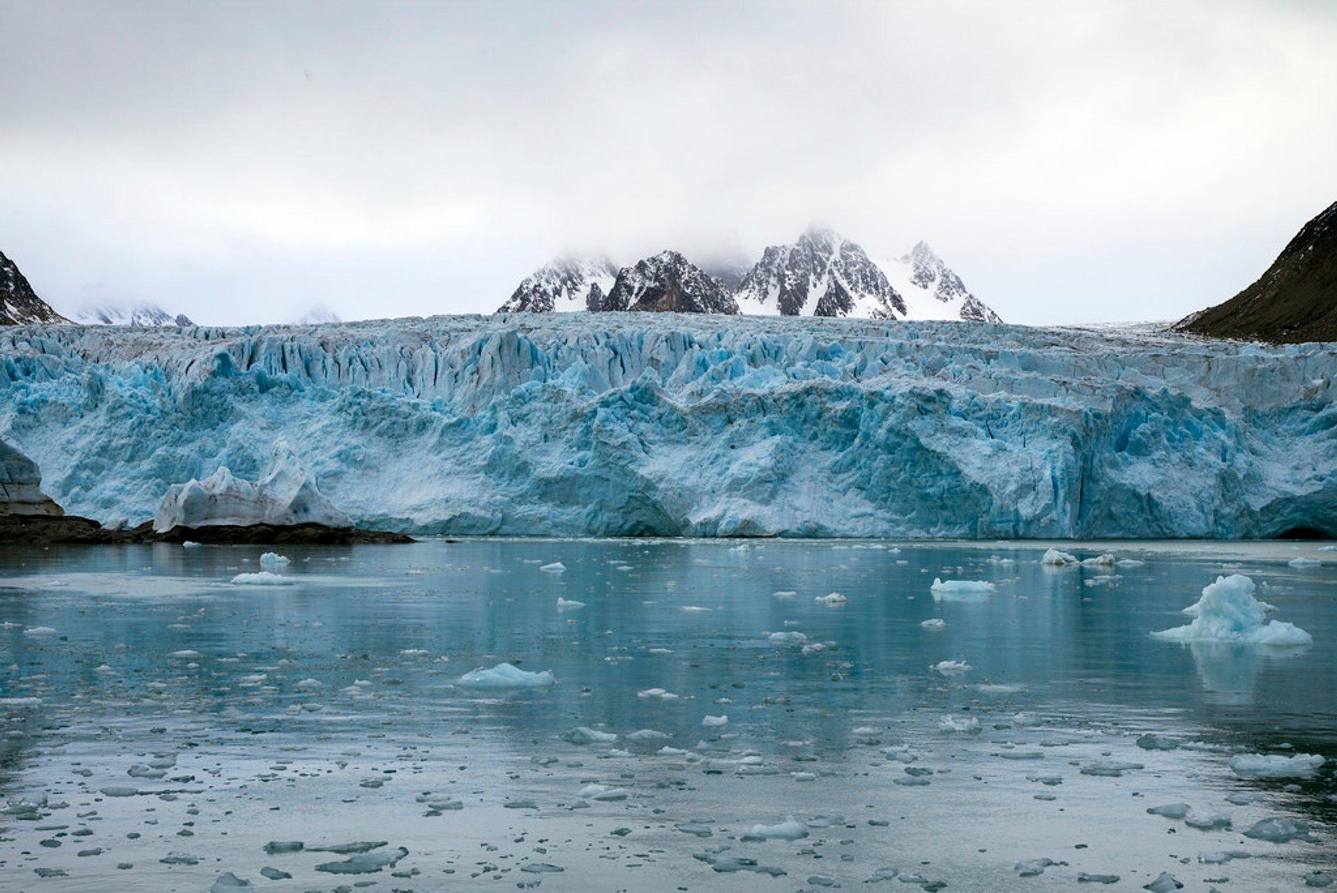 Nordenskiöldbreen Glacier 2020