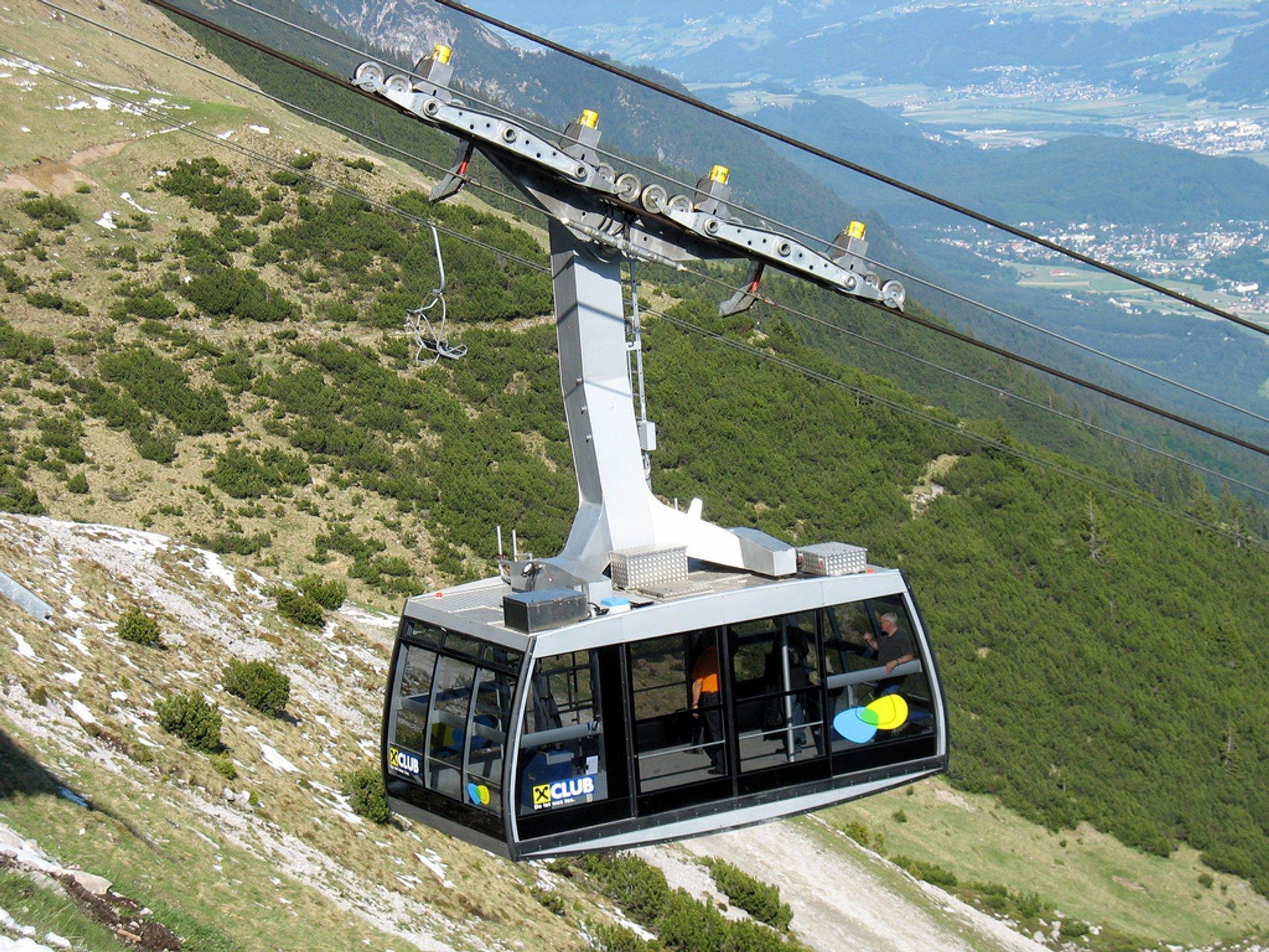Alpenzoo Innsbruck in Austria - Best Season 2020