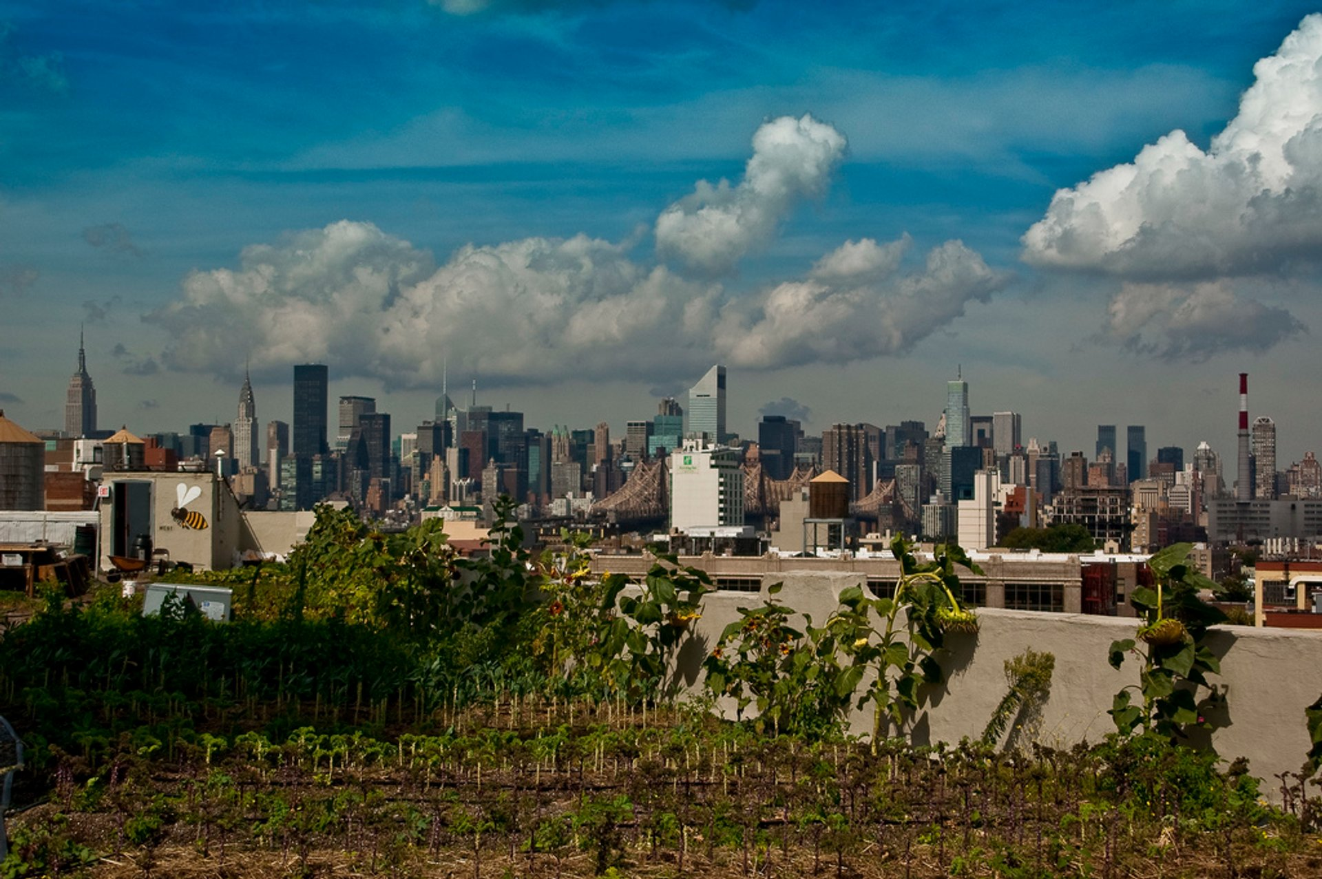 Best time for Rooftop Gardens and Farms in New York 2019