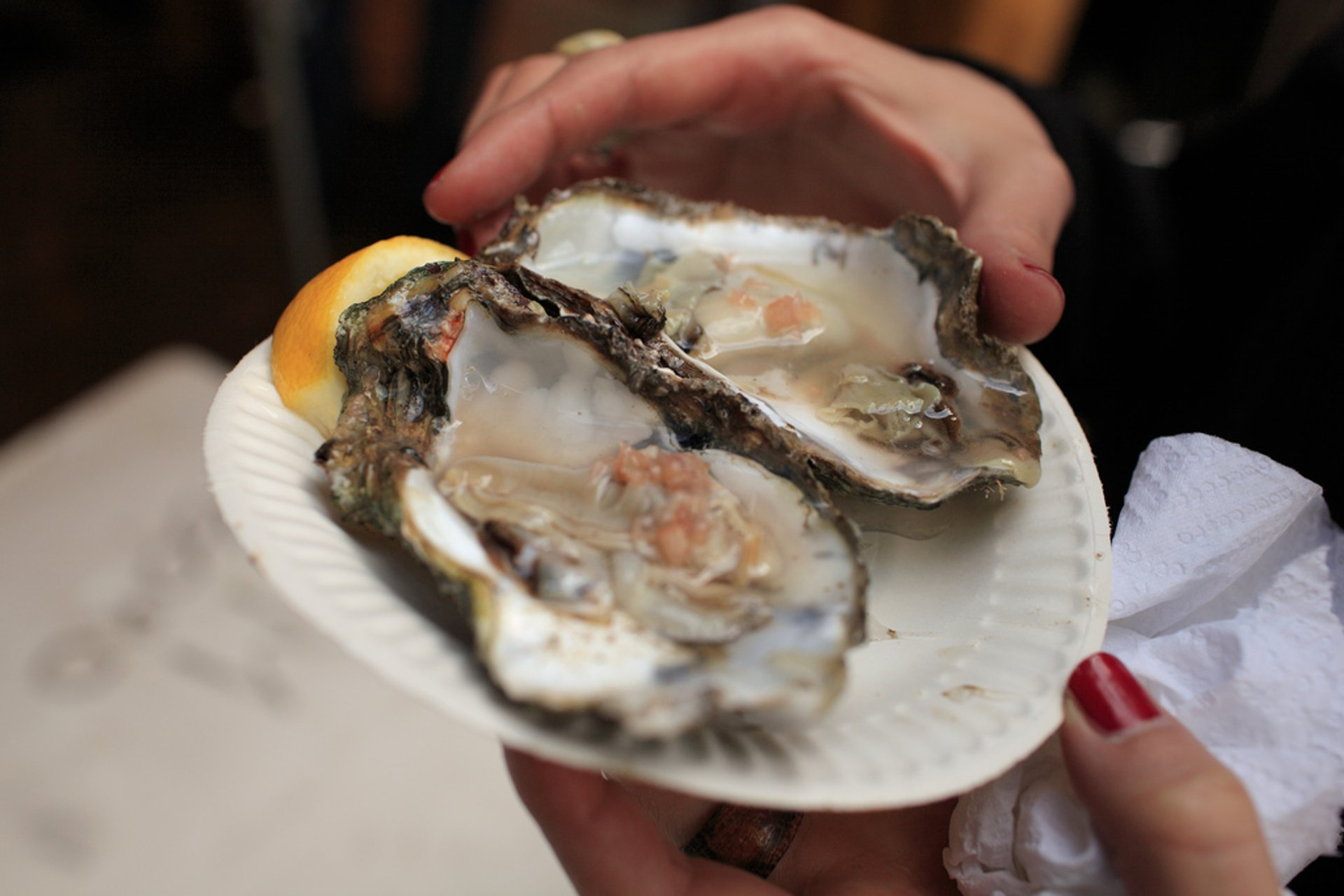 Oysters in Scotland 2019 - Best Time